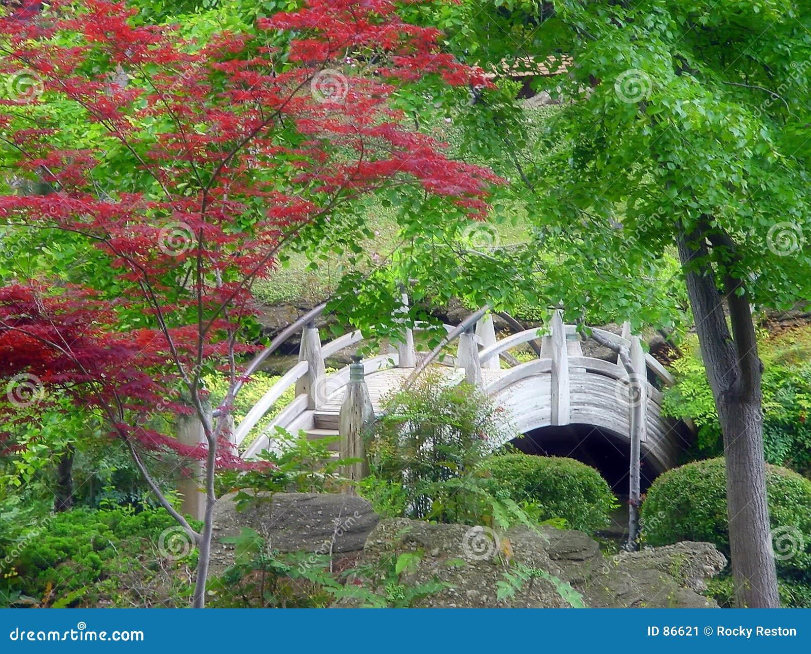 Trädgårds- japan för bro