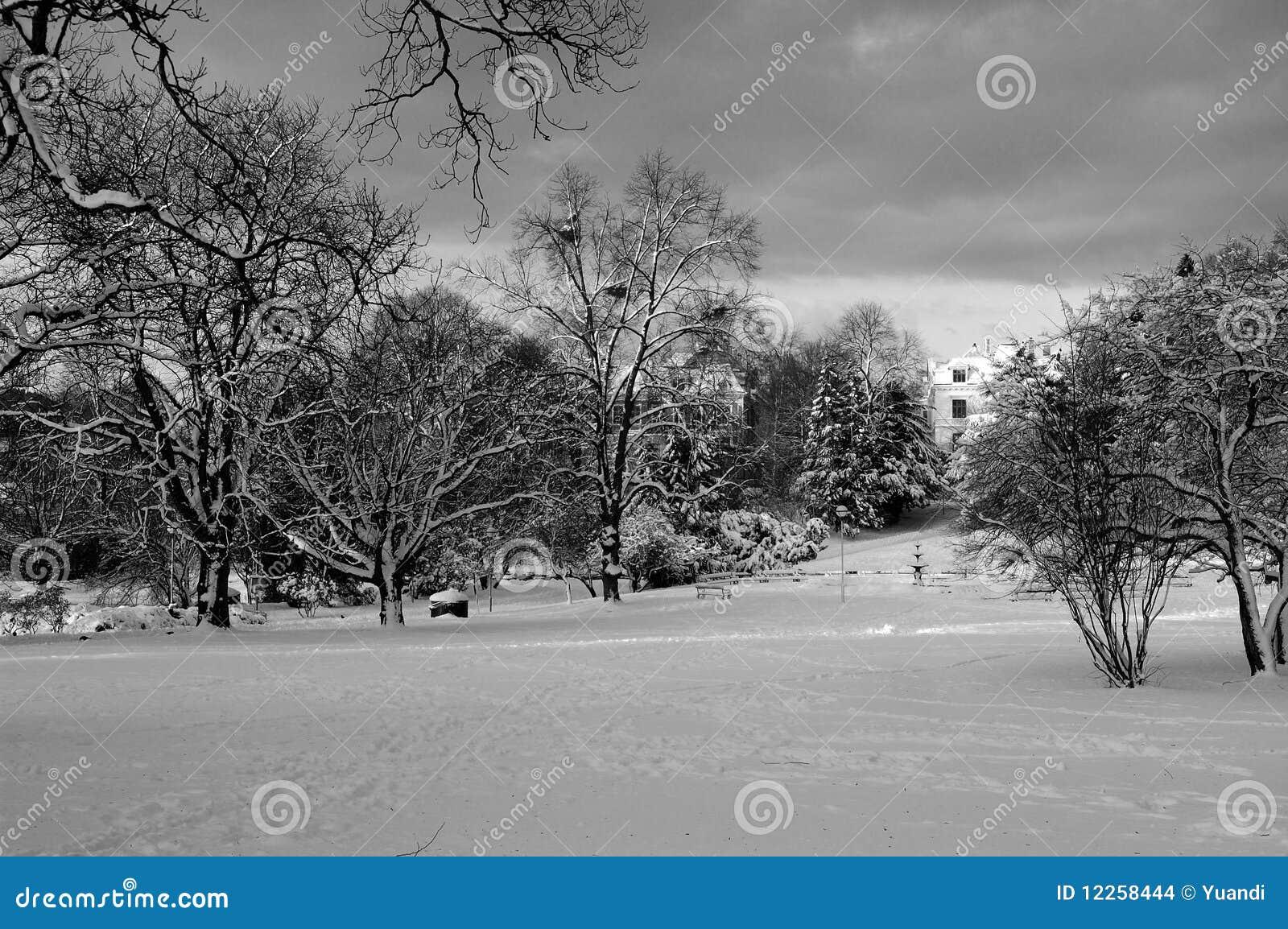Trädgårds- snow för stad