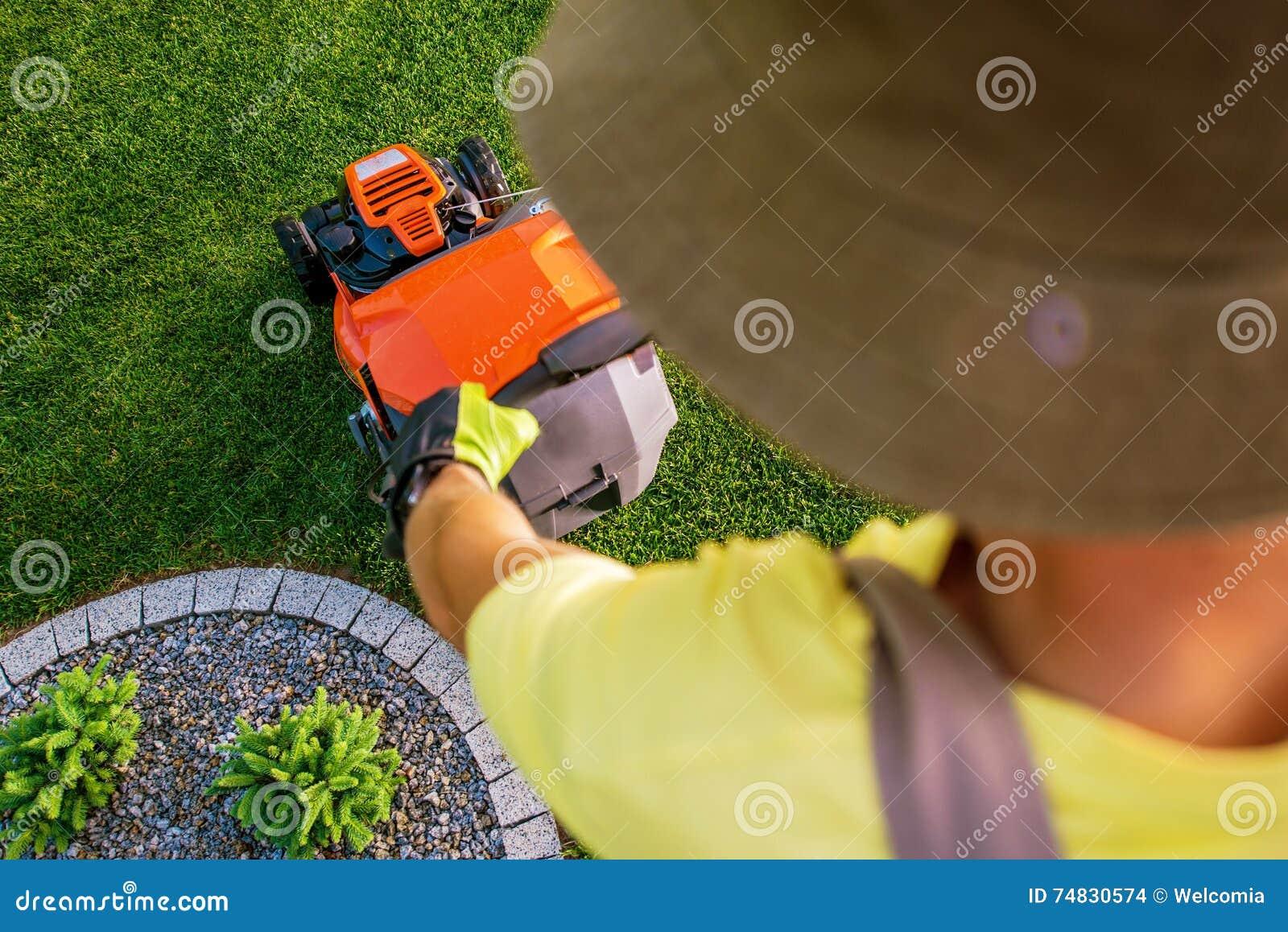 Trädgårdsmästare Lawn Mowing