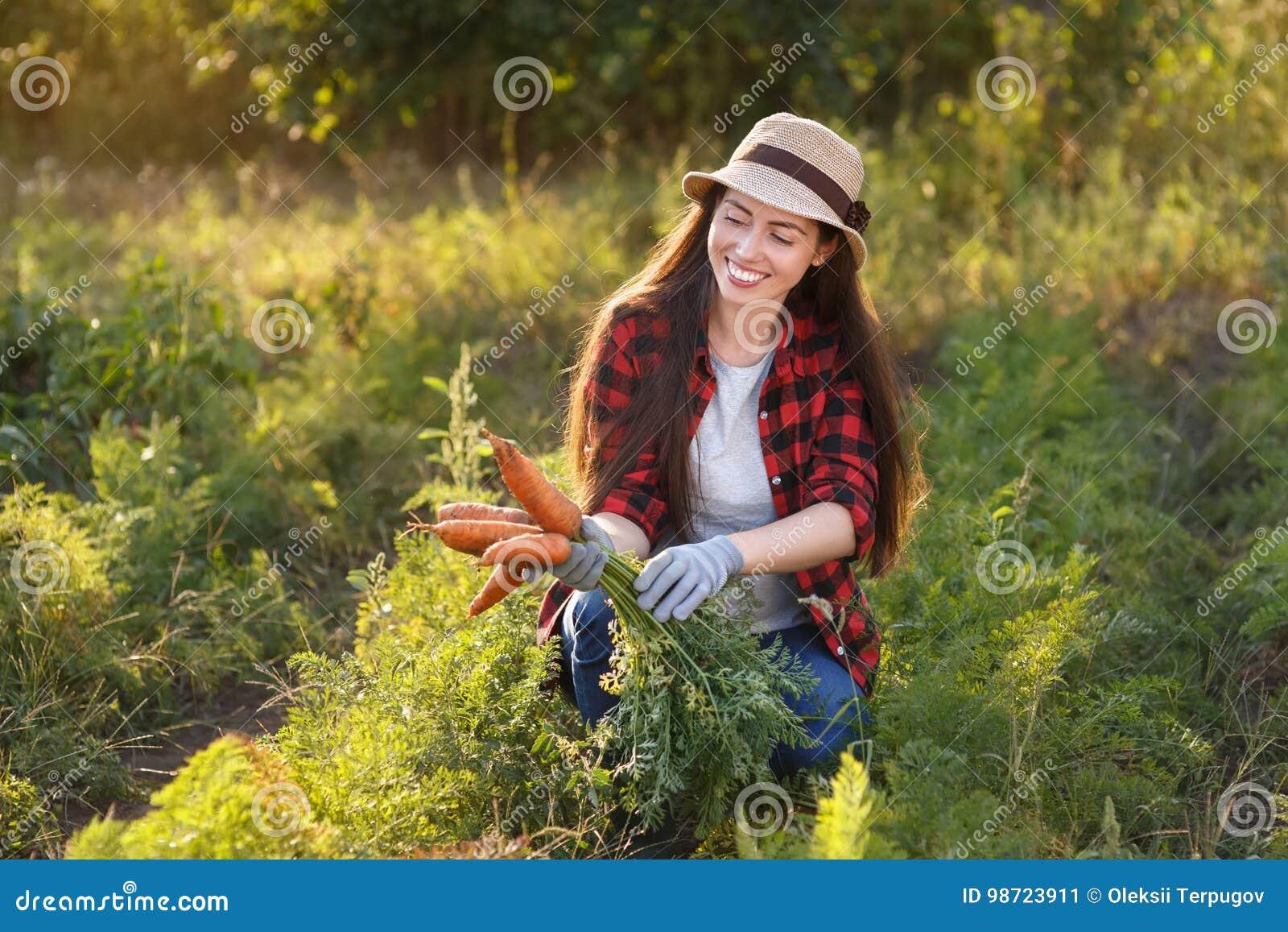 Trädgårdsmästare med morötter i en grönsakträdgård