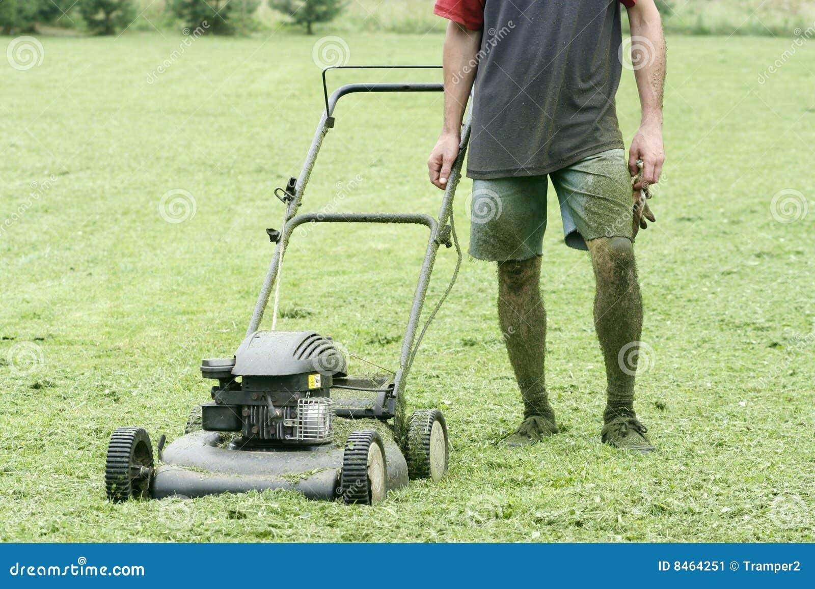 Trädgårdsmästarelawngräsklippningsmaskin