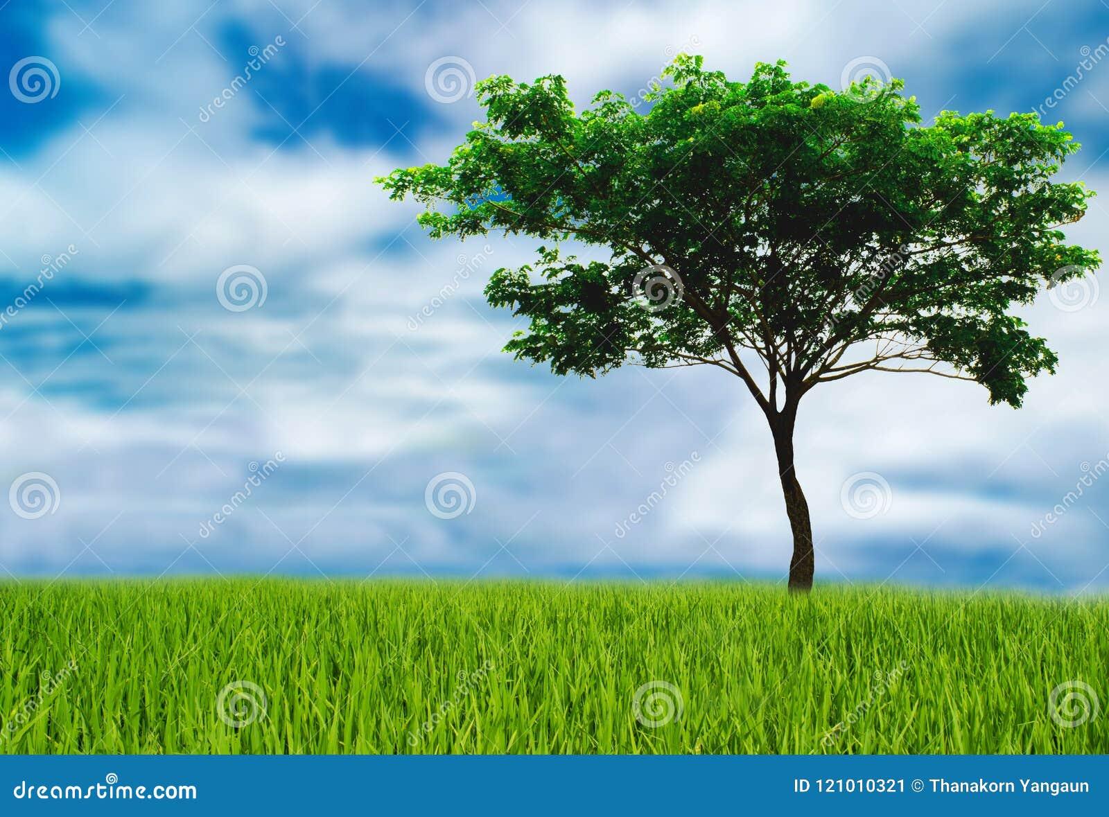 Trädhjälp förminskar globala uppvärmningen, älskar världsförälskelseträden, begrepp för jorddag behar sammanfogar oss inför framt