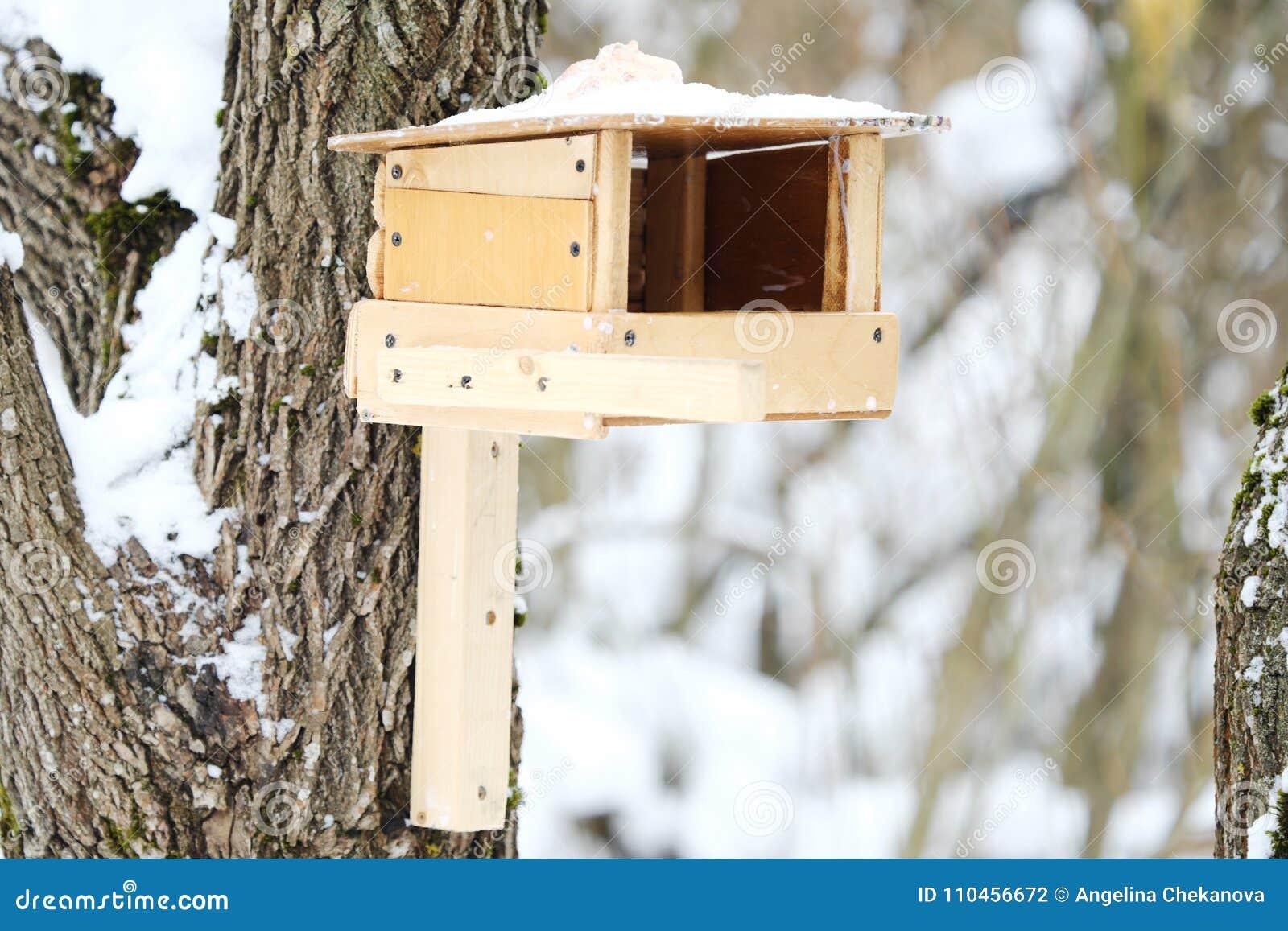 Träförlagematare på trädet för fåglar i skogen