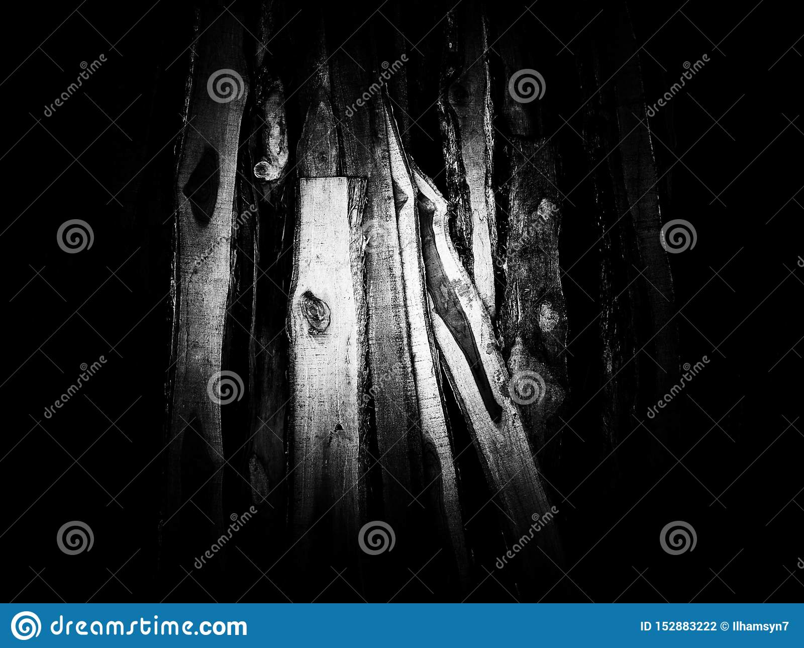 Trähögtextur på svartvitt