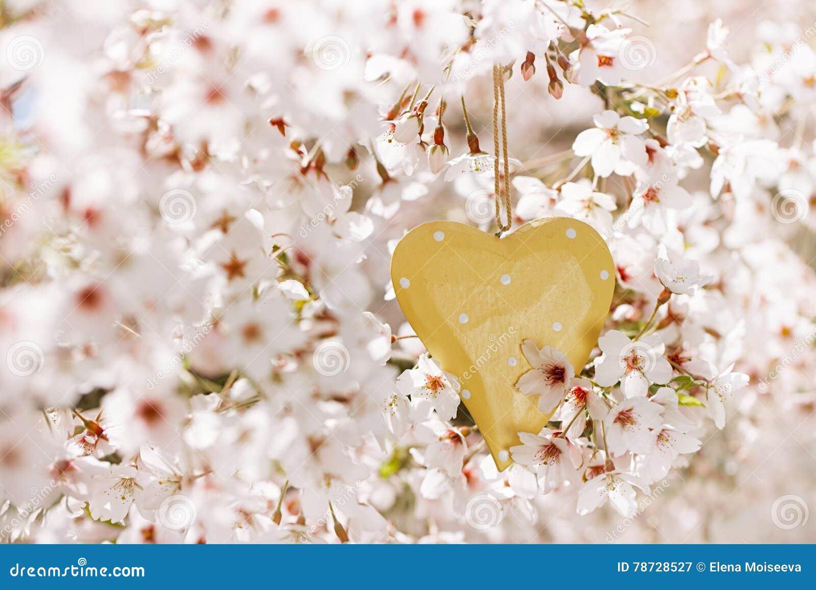 Trähjärta i vår med blomningen
