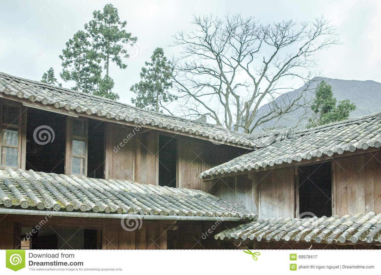 Trähus för härlig arkitektur, Vuongs husslott