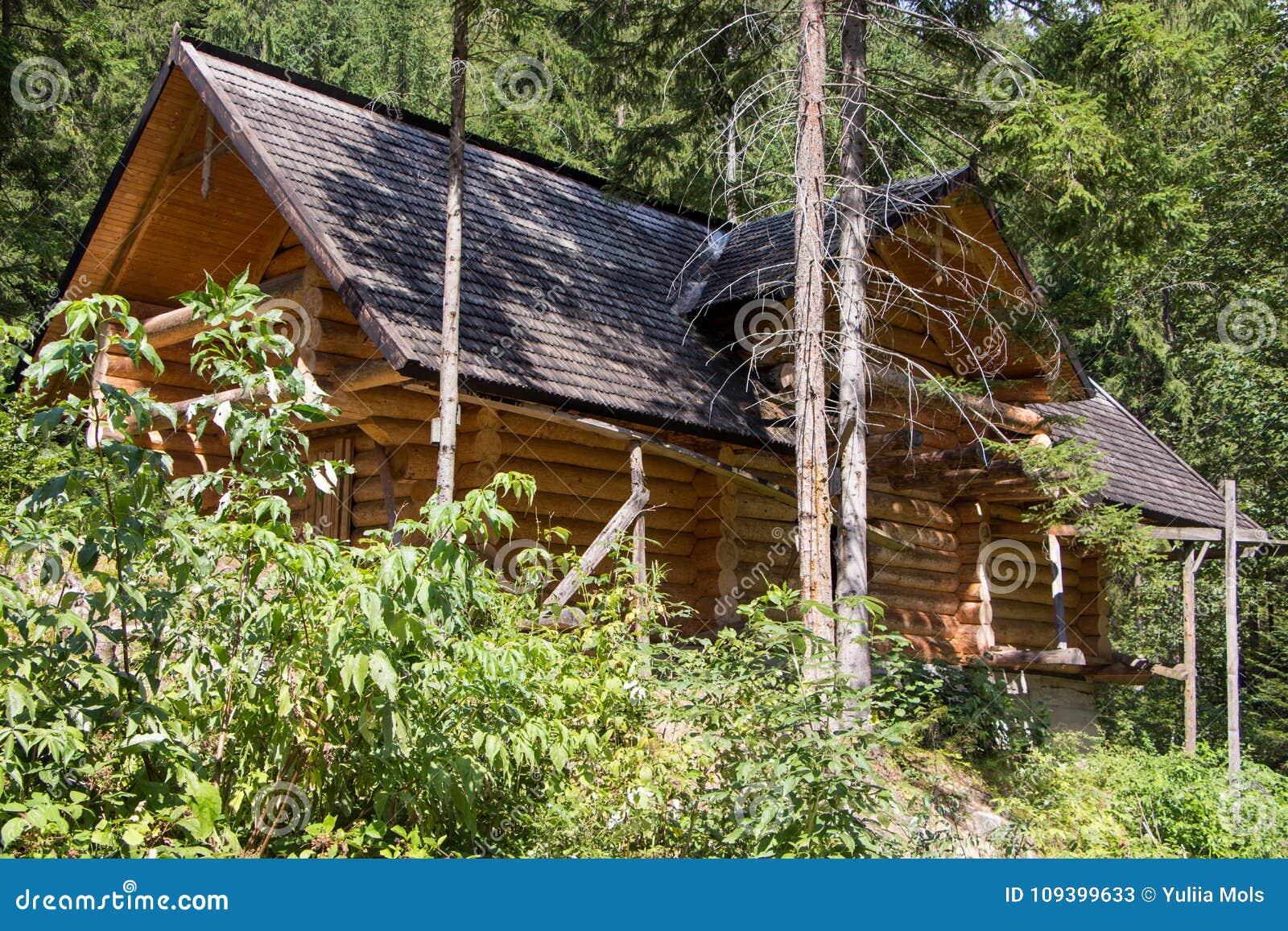 Trähus i skogen