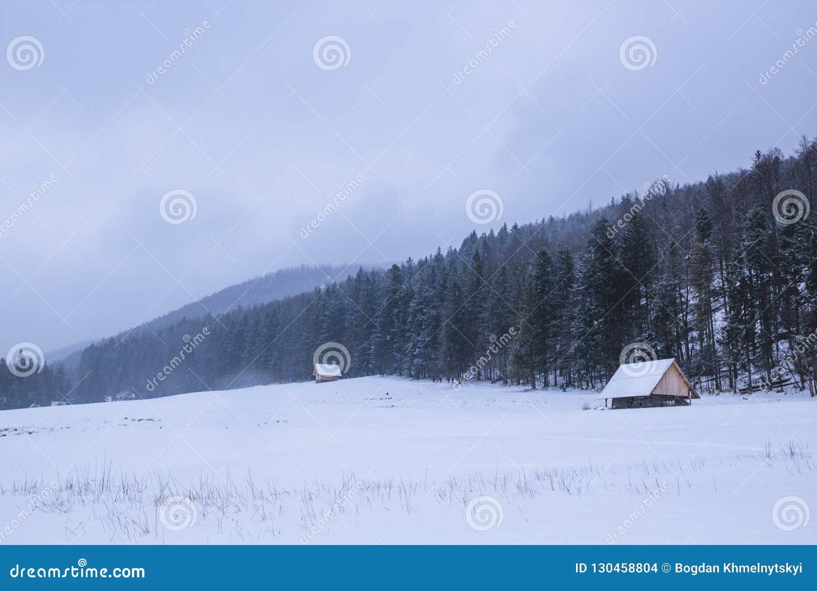 Trähuset står på en snöig dal, ett berg i backgroen