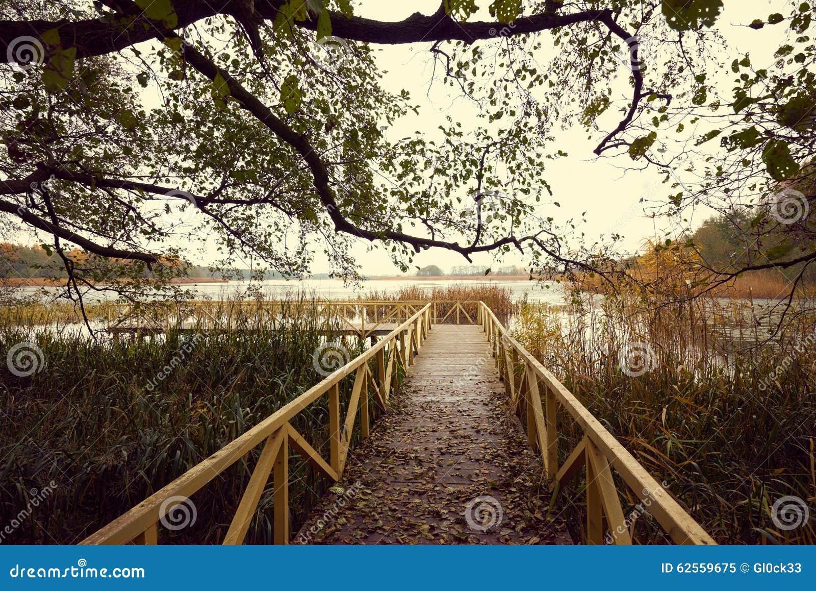 Träpir med sidor och trädfilialer