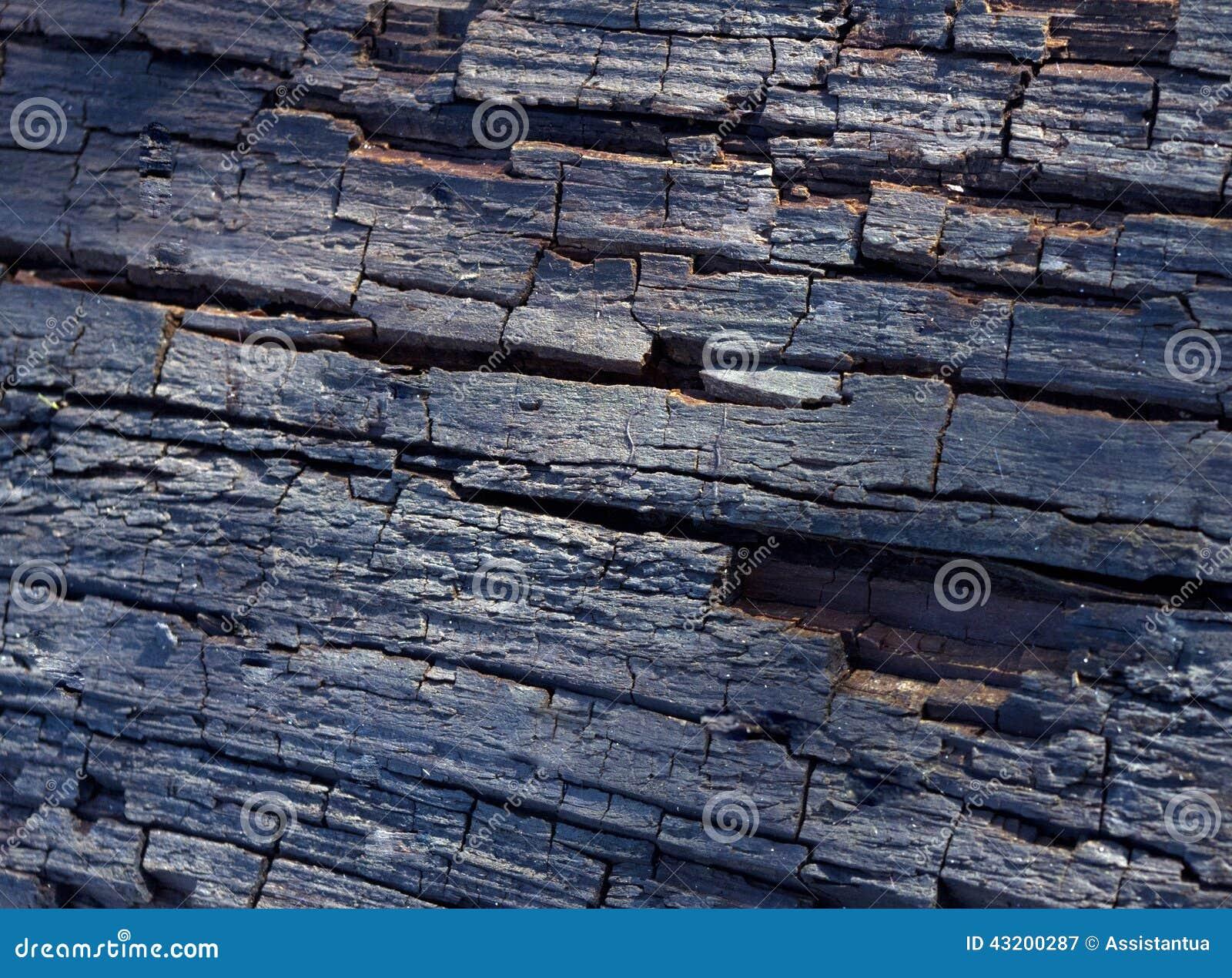 Download Trästruktur, gammalt träd fotografering för bildbyråer. Bild av föråldrat - 43200287