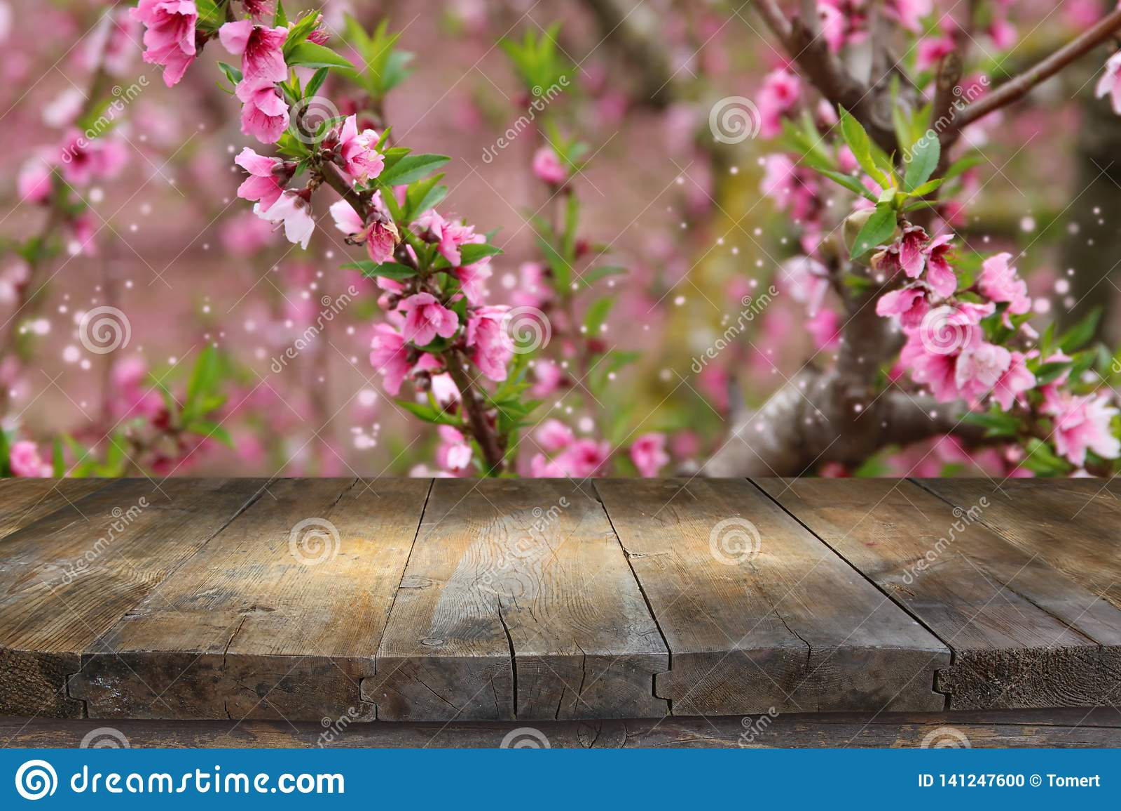 Trätabell som är främst av landskap för vårblomningträd Produktskärm och presentation
