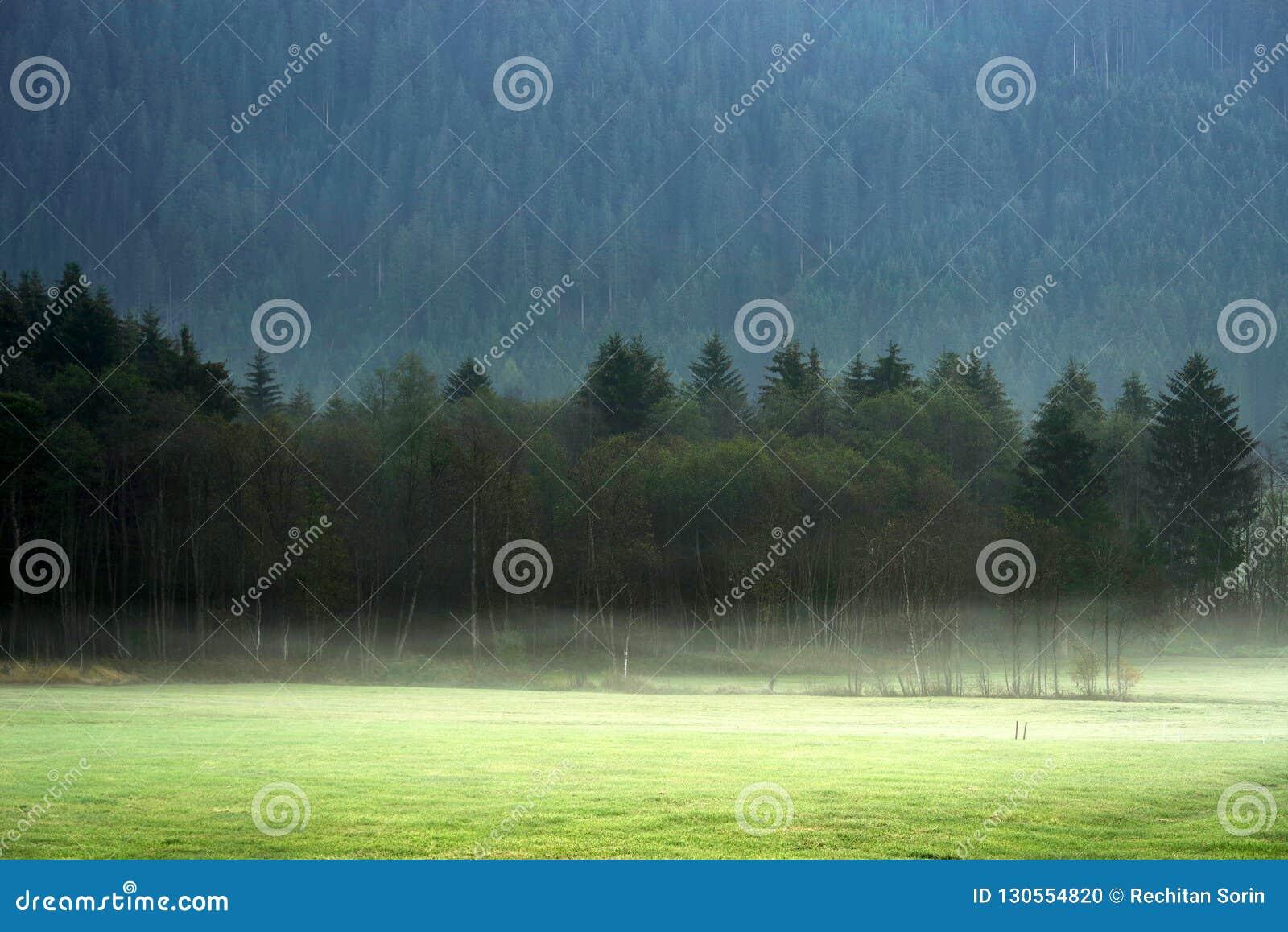 Träumerische Landschaft verloren im starken Nebel, Valle di Casies