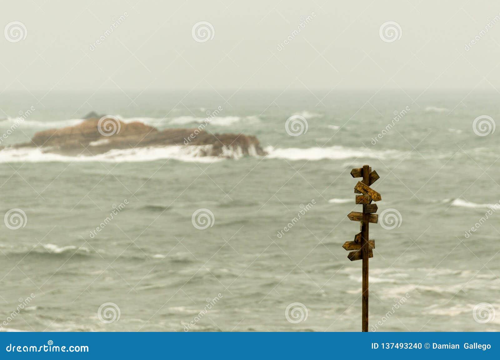 Trävägvisare med många pekare med havet på bakgrund