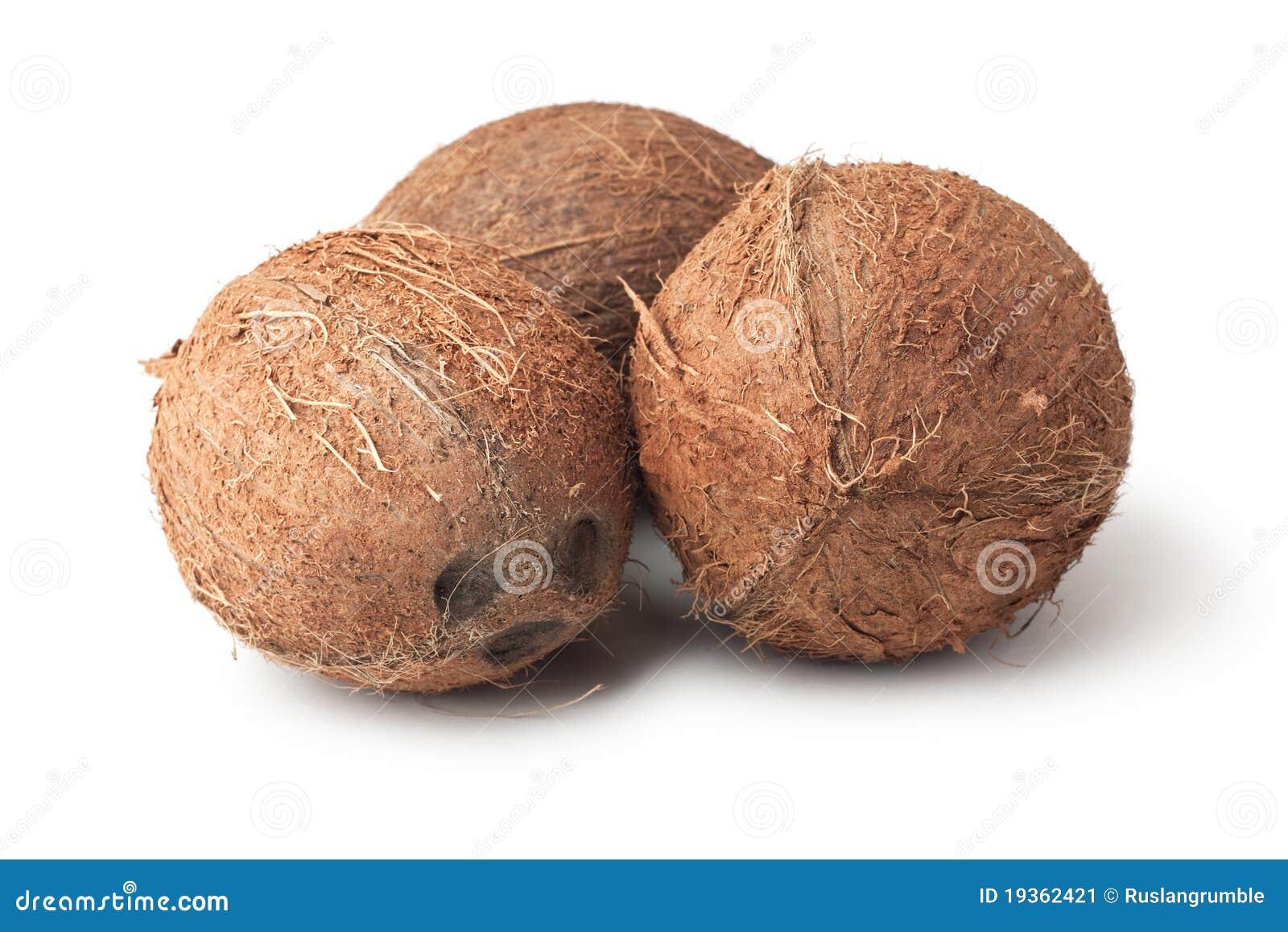 Três cocos isolados no branco