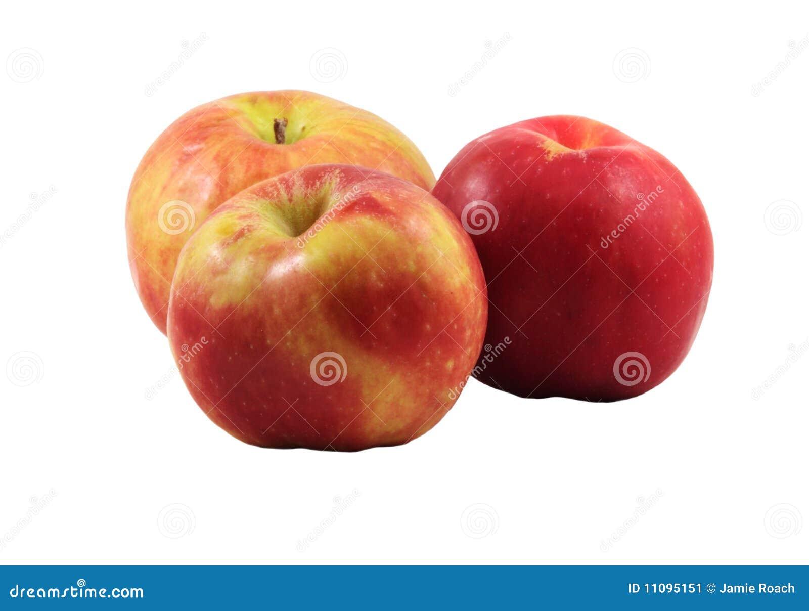 Três maçãs do gravenstein