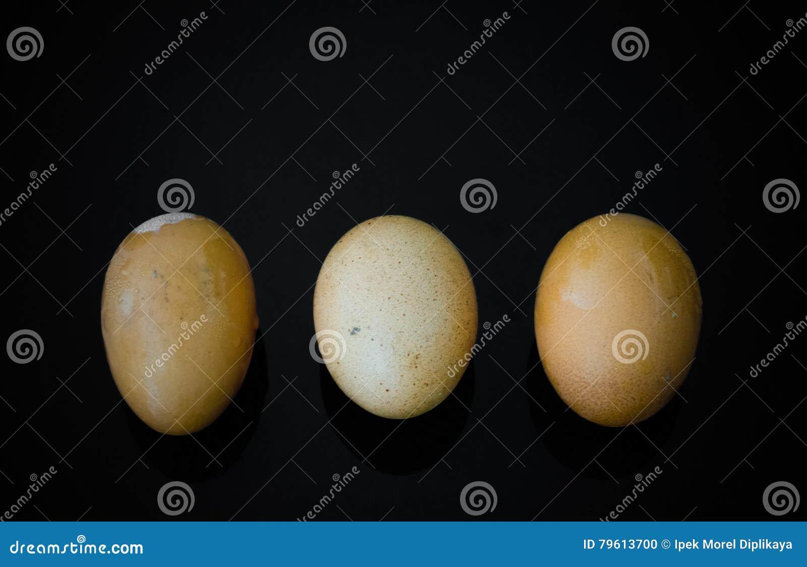 Três ovos com shell no fundo preto