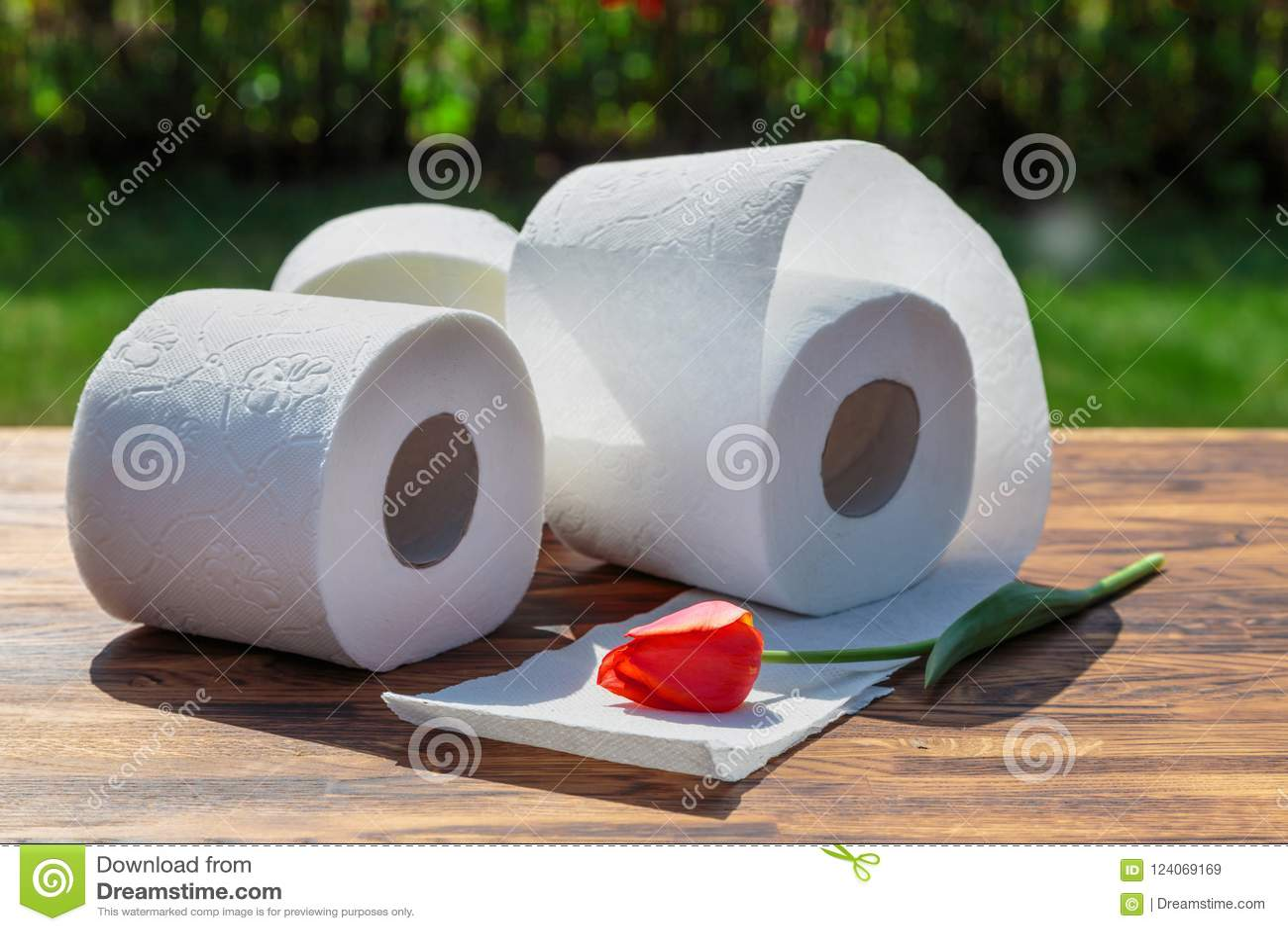 Três rolos do papel higiénico