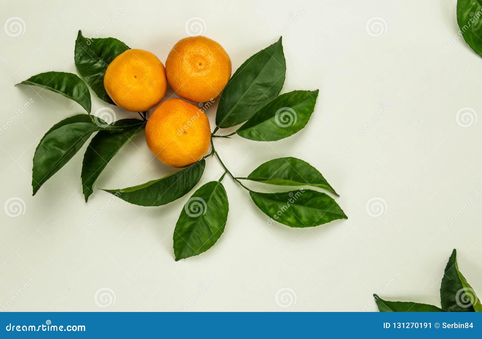 Três tanjerinas, tangerinas, clementina, citrinas