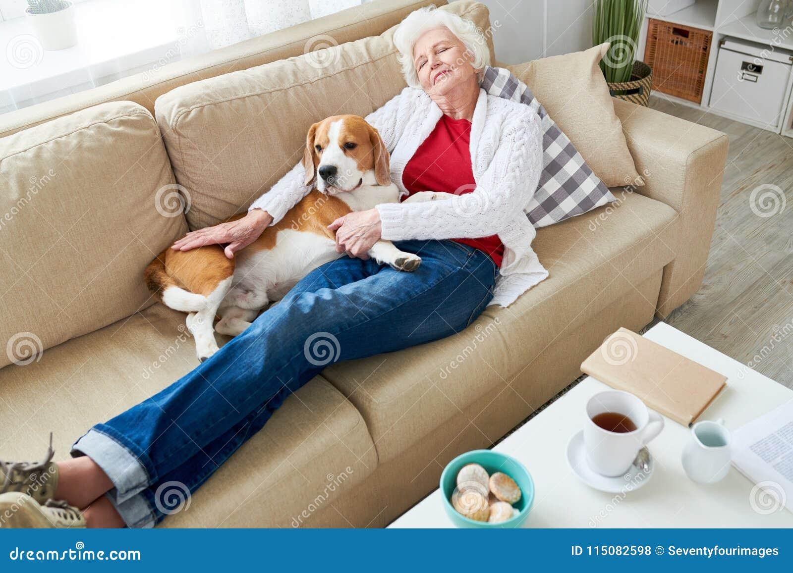 Trött älsklings- ägare som kopplar av med hunden på soffan