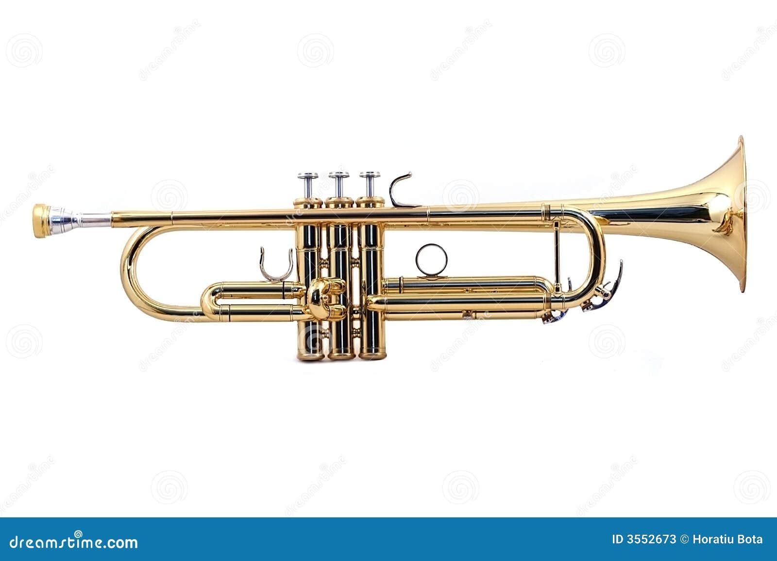 Trąbka złoto