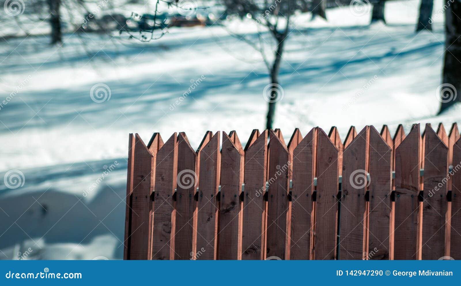 Tr?staket i sn?