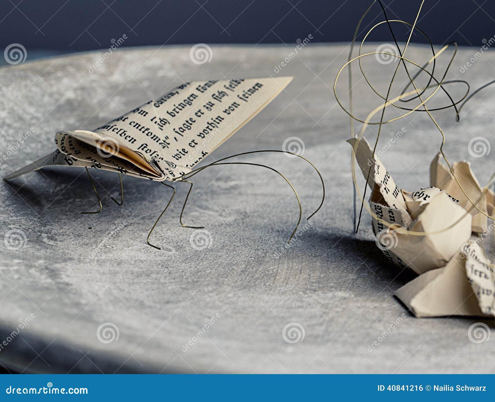 Traças de papel