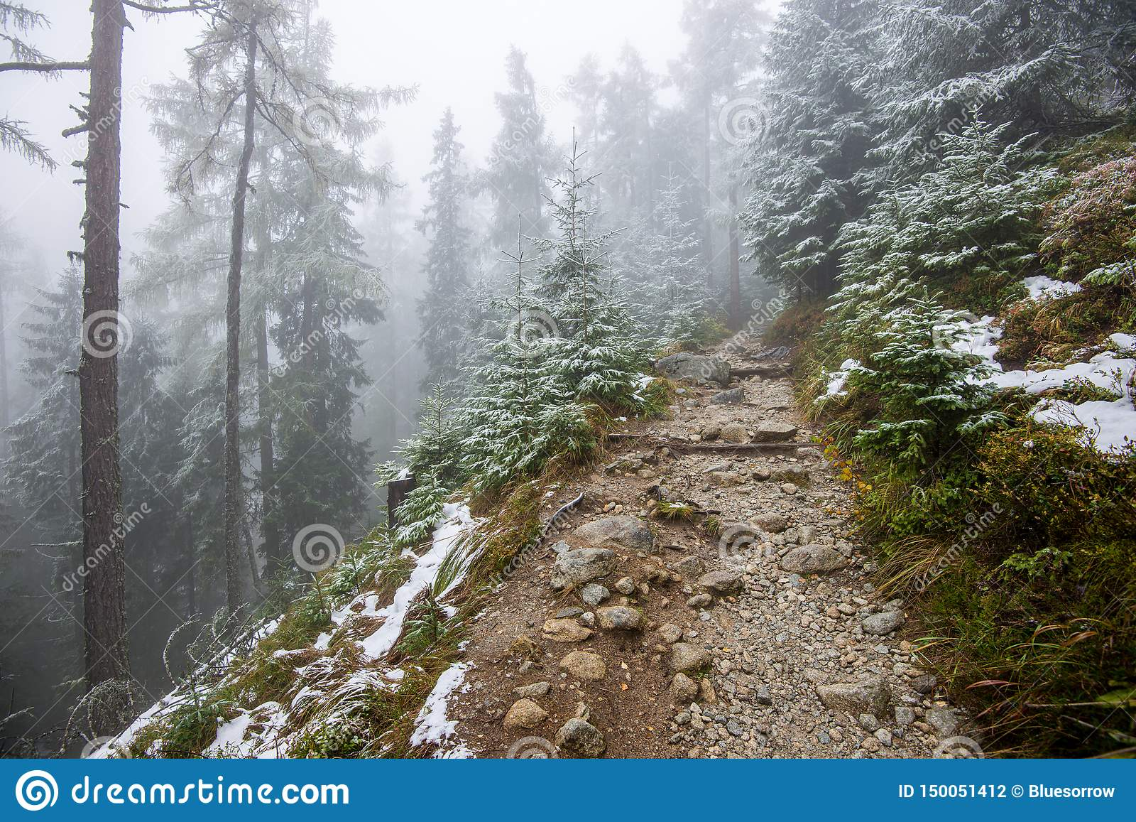 Traînée de touristes de hausse humide humide avec des restes de neige des côtés