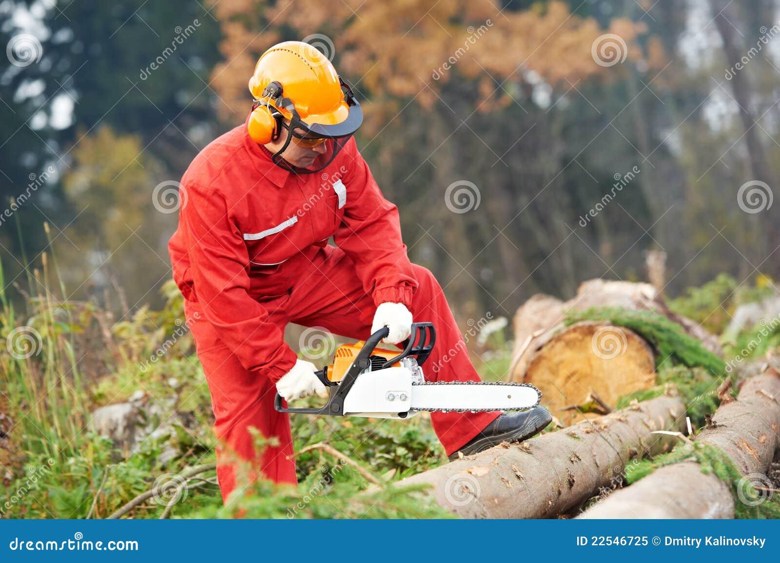 Trabajador del leñador con la motosierra en el bosque