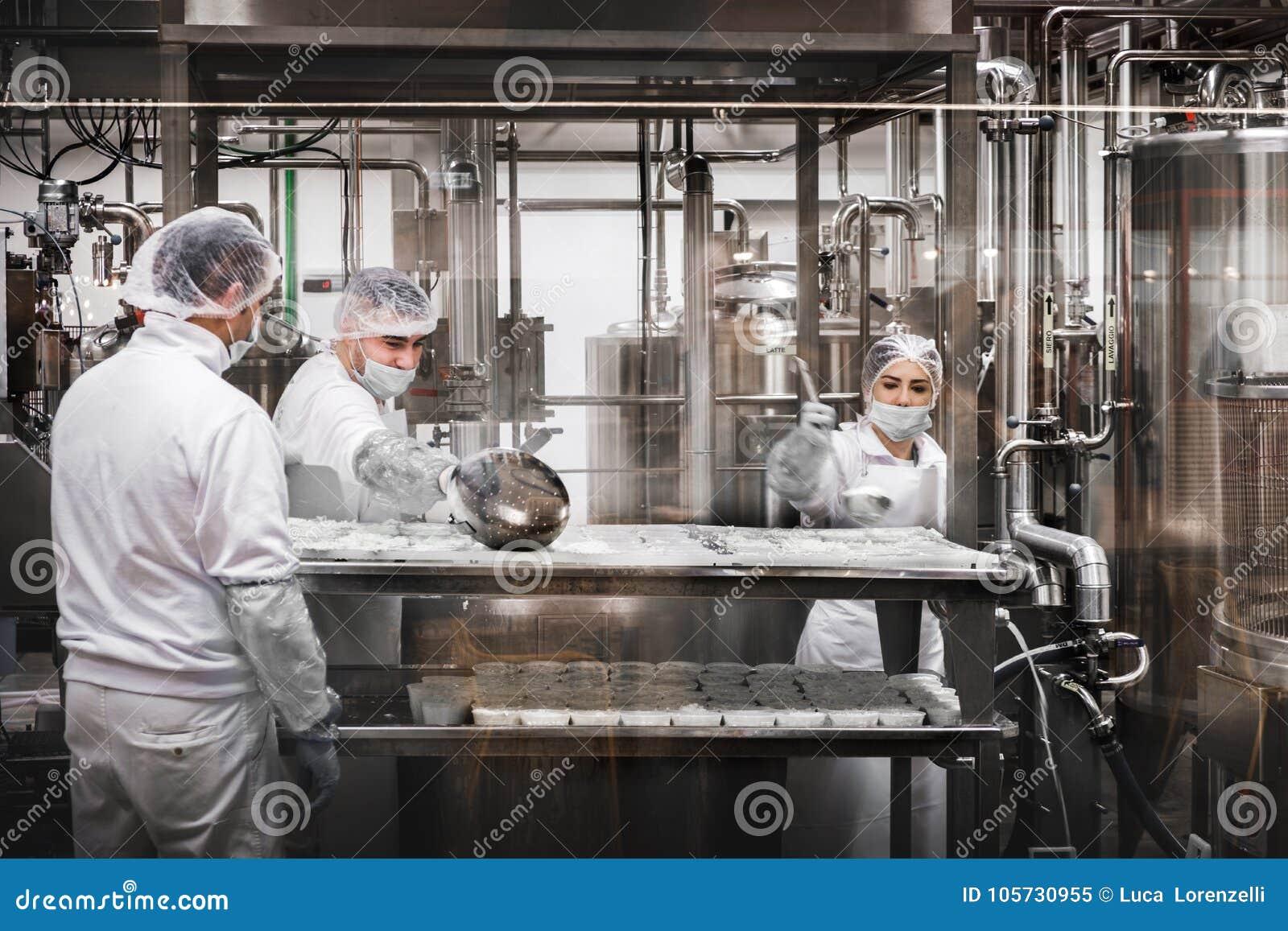 Trabajadores en la quesería que prepara el queso del Ricotta