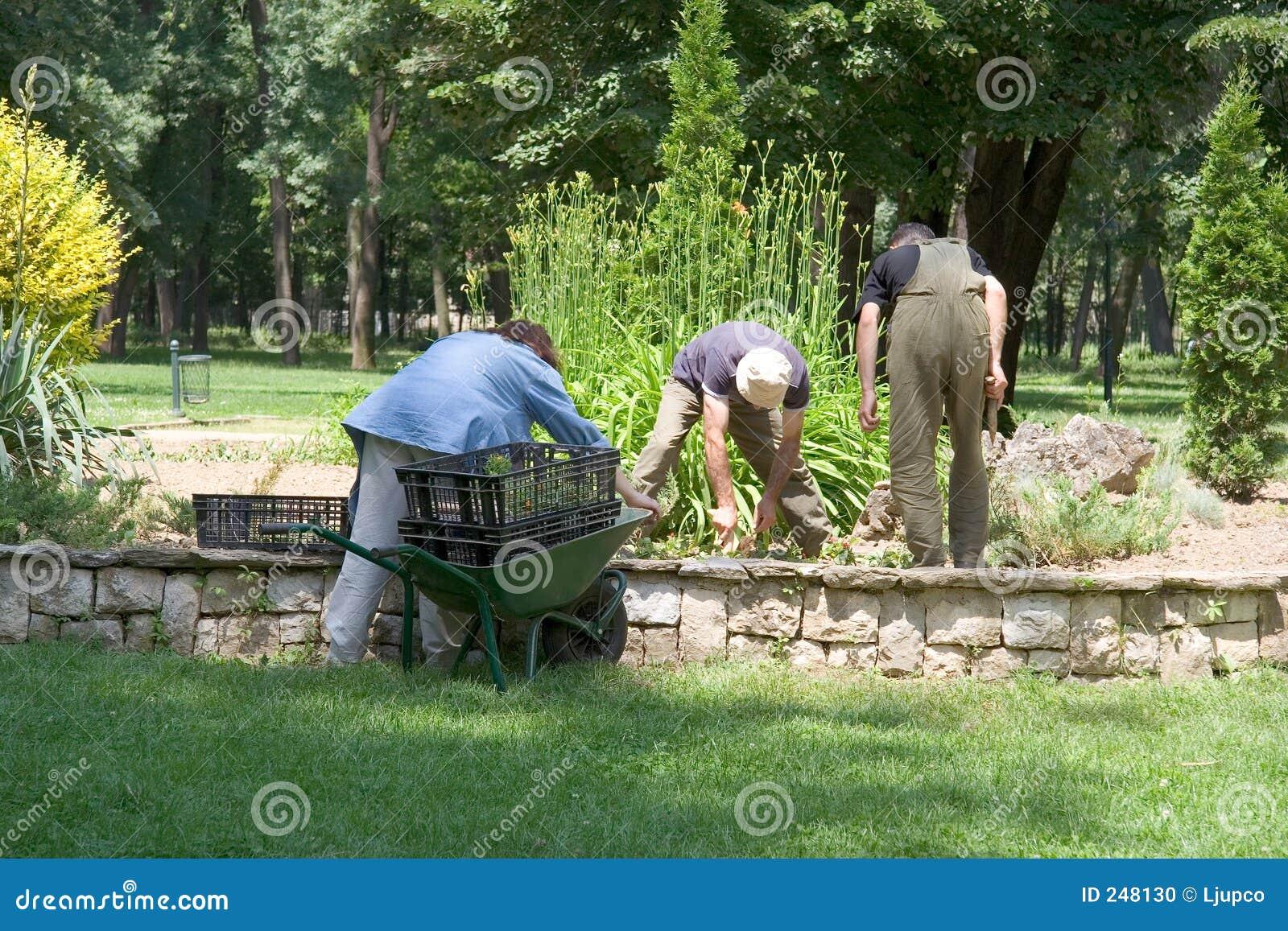 Trabalhadores no parque