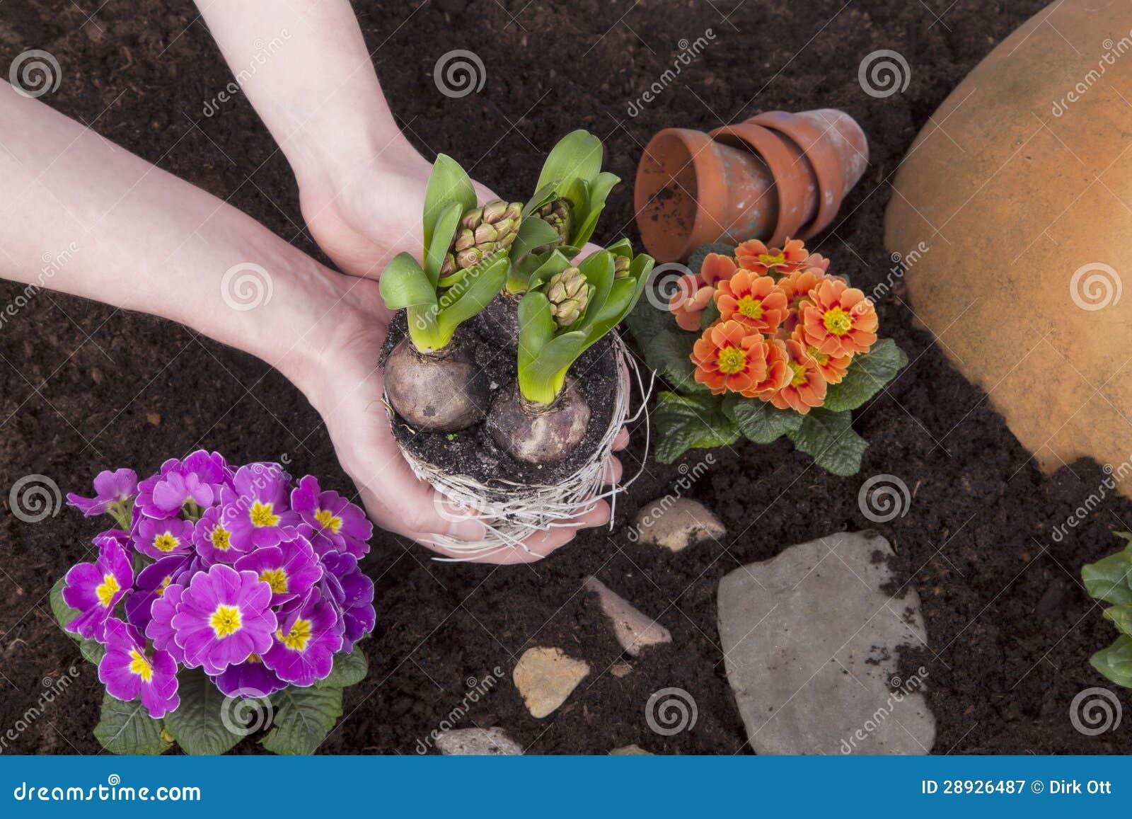 Trabalho do jardim
