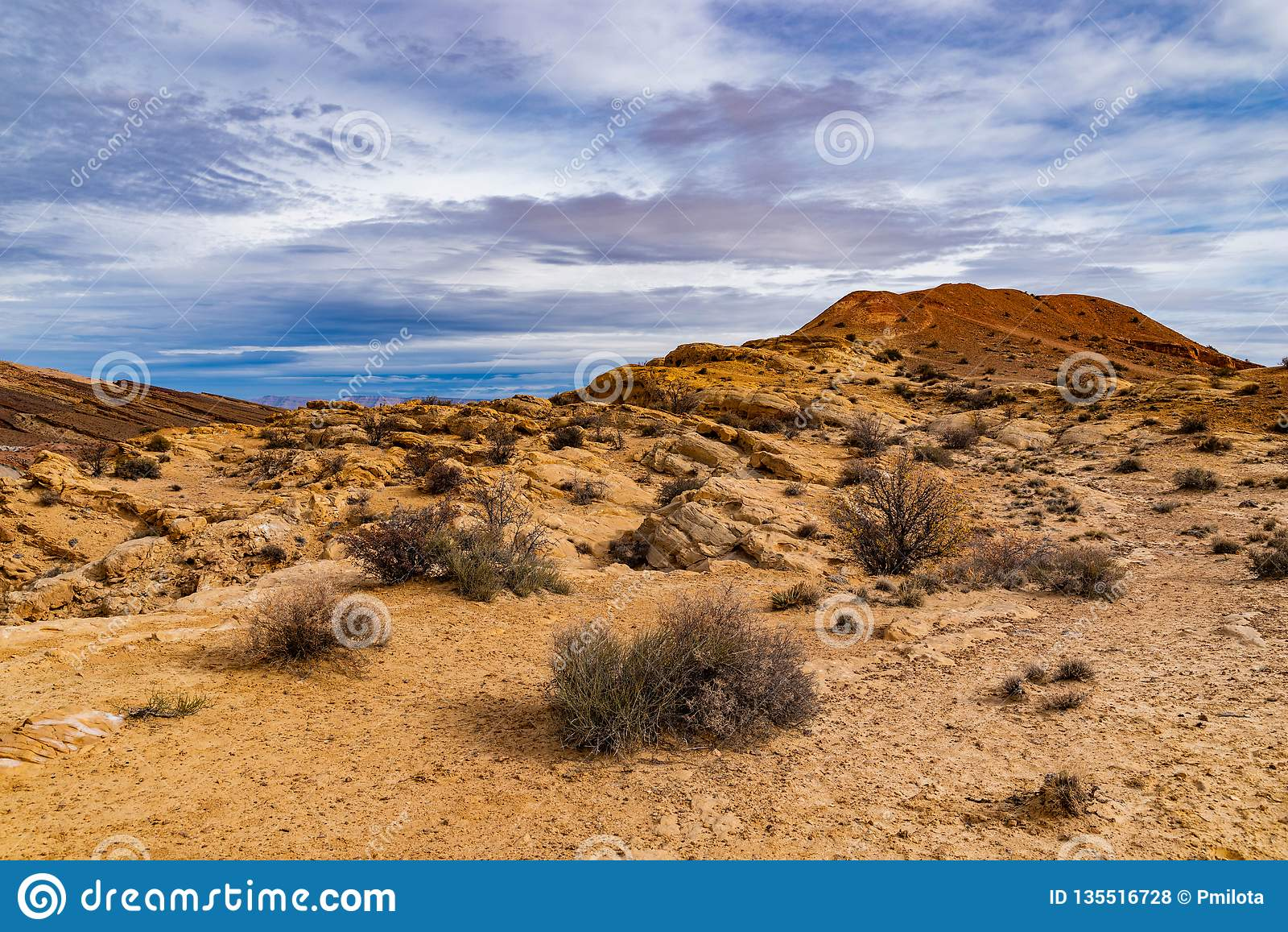 Tracce del deserto del deserto dell Utah