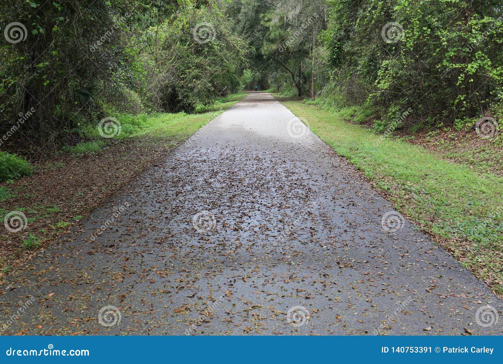 Traccia Autumn Early Morning della bici