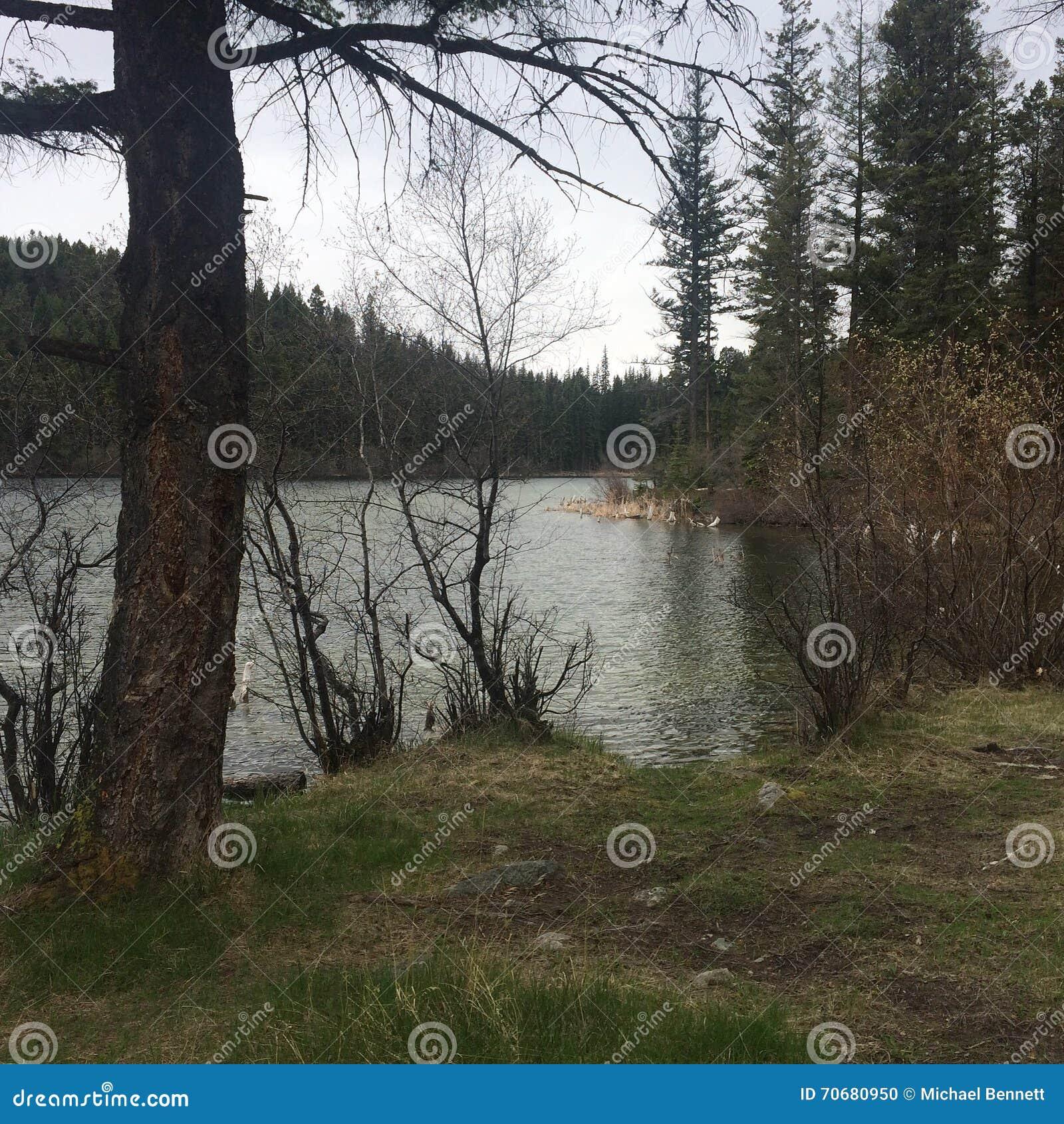 Traccia del lago che fa un 39 escursione con i compagni for Piani economici della cabina di ceppo
