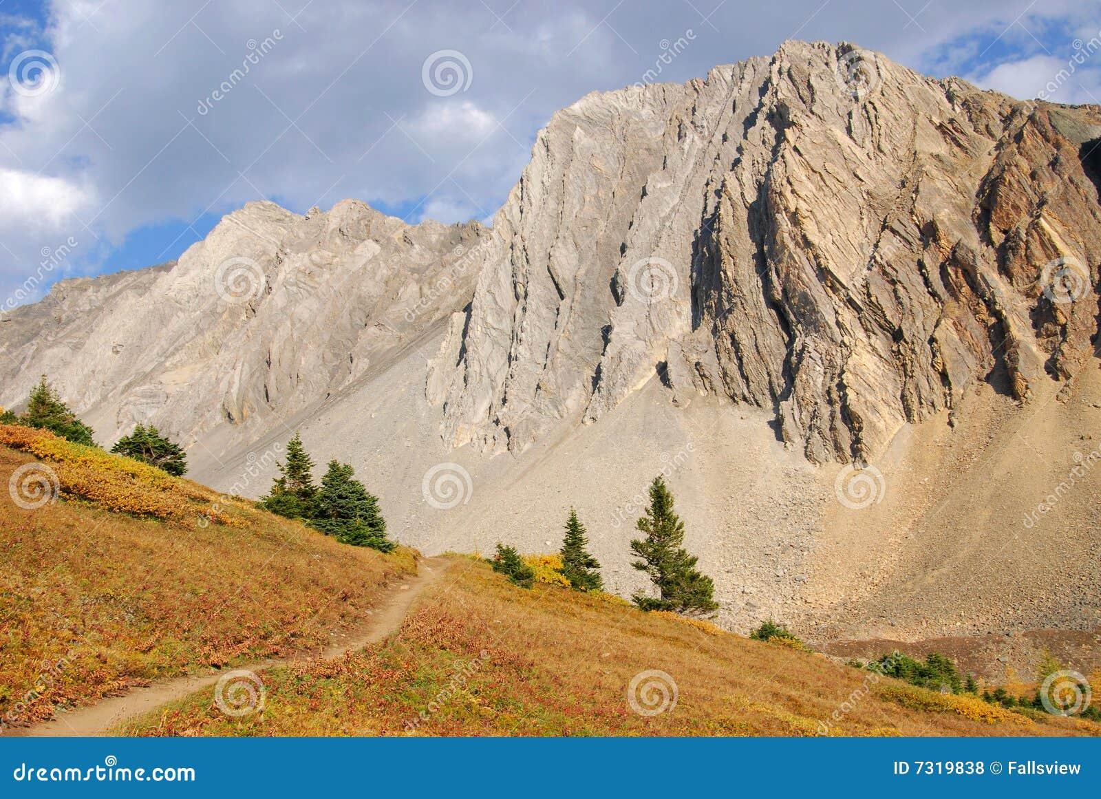 Traccia di escursione in prato alpino