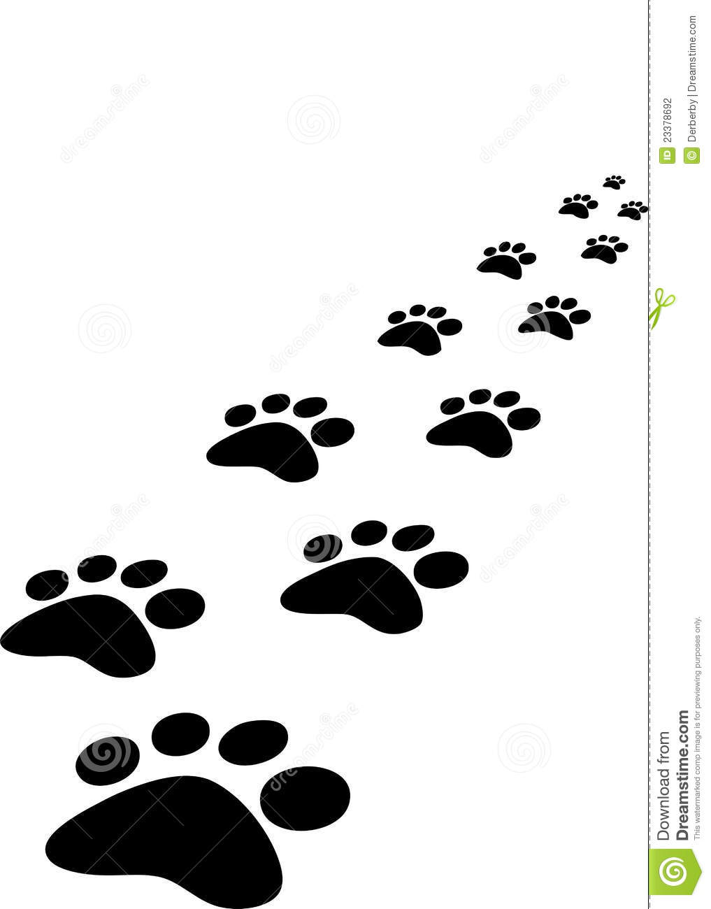Trace of dogs