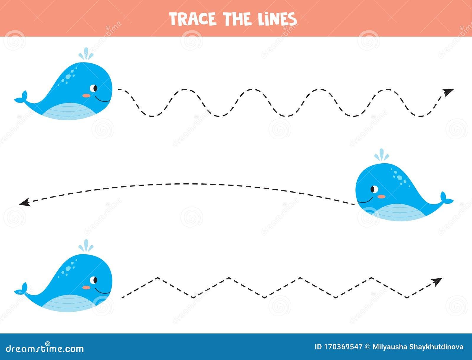 whale trace demo bitcoin indirizzo