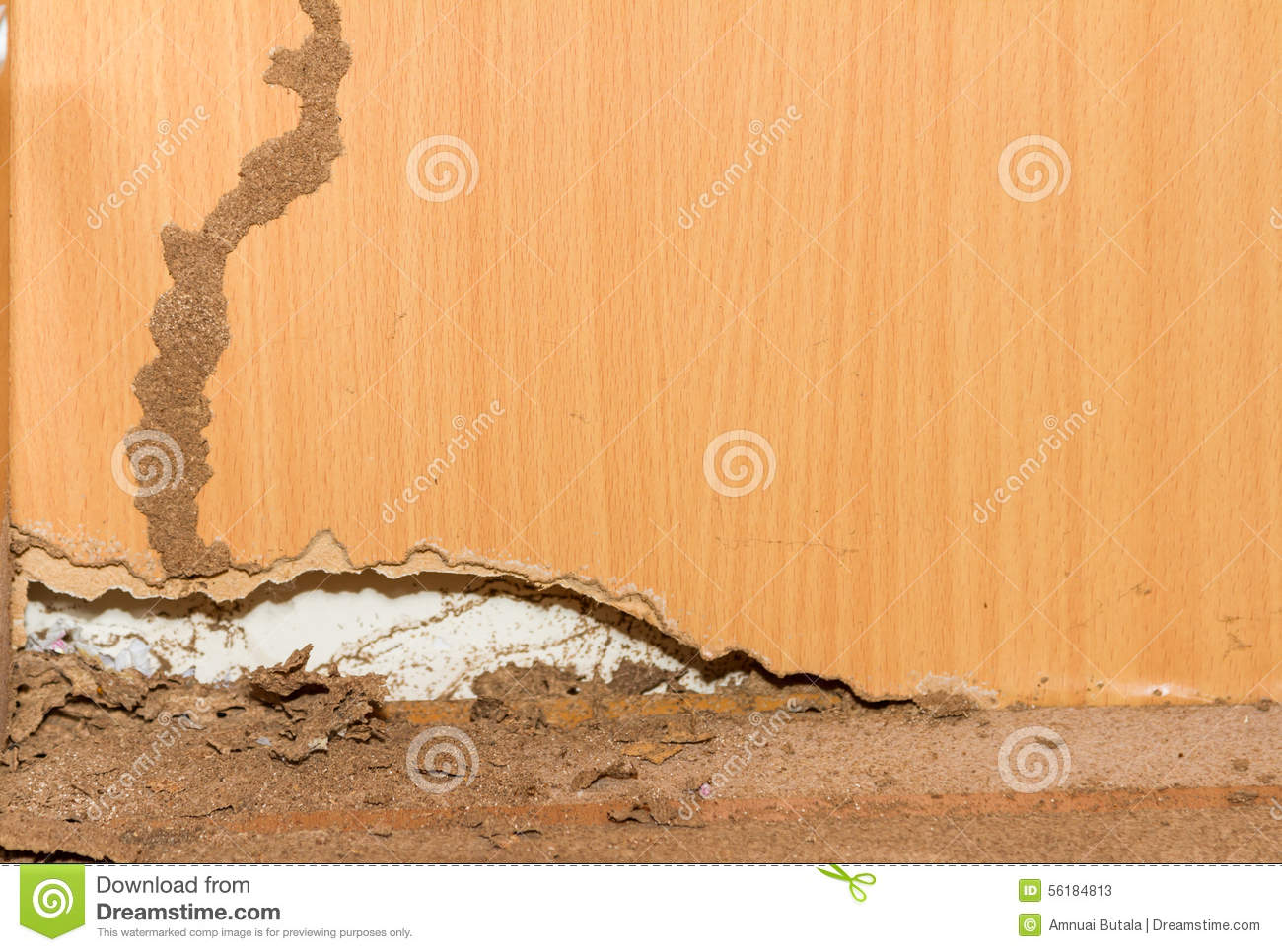 traces des termites sur le vieux fond en bois image stock image du configuration corrosion. Black Bedroom Furniture Sets. Home Design Ideas
