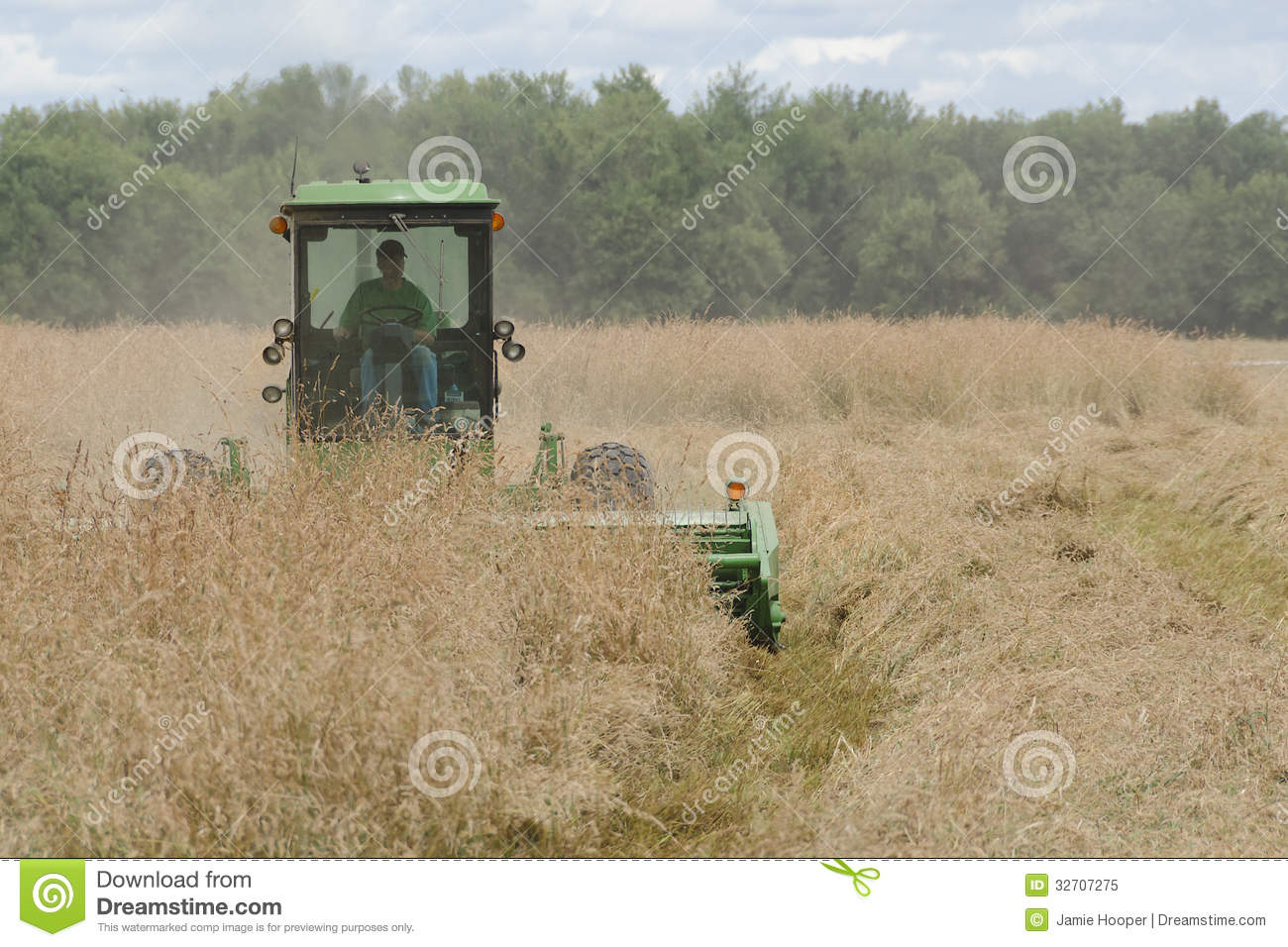 Tractor Cutting Grass Seed