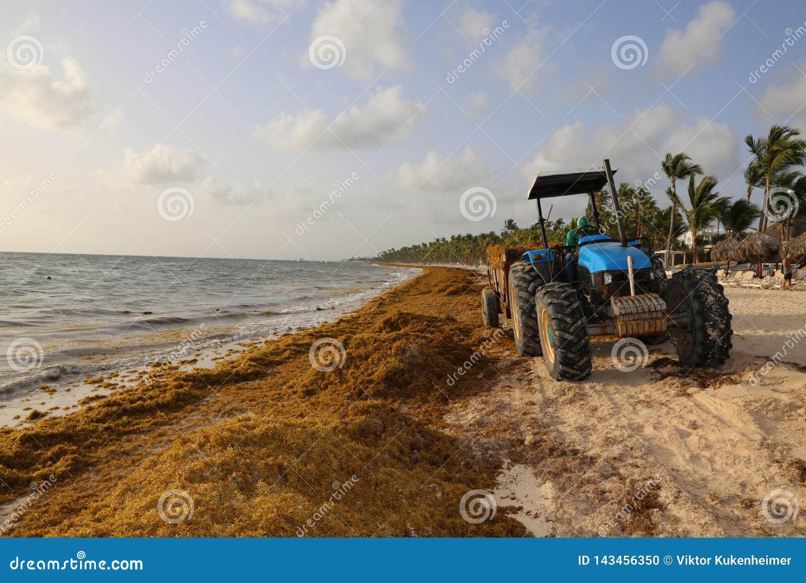 Tractor en la playa en la República Dominicana del Caribe