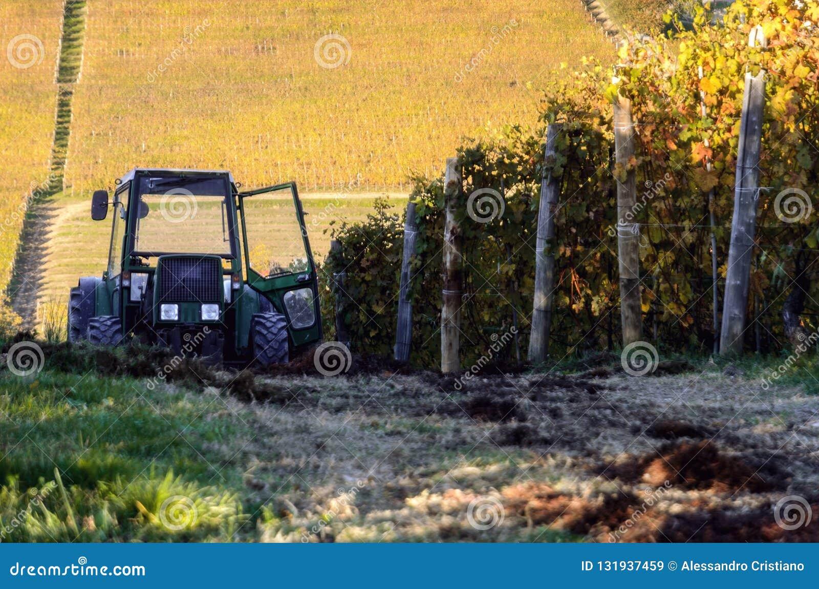Tractor en los viñedos del barolo Piamonte, Italia