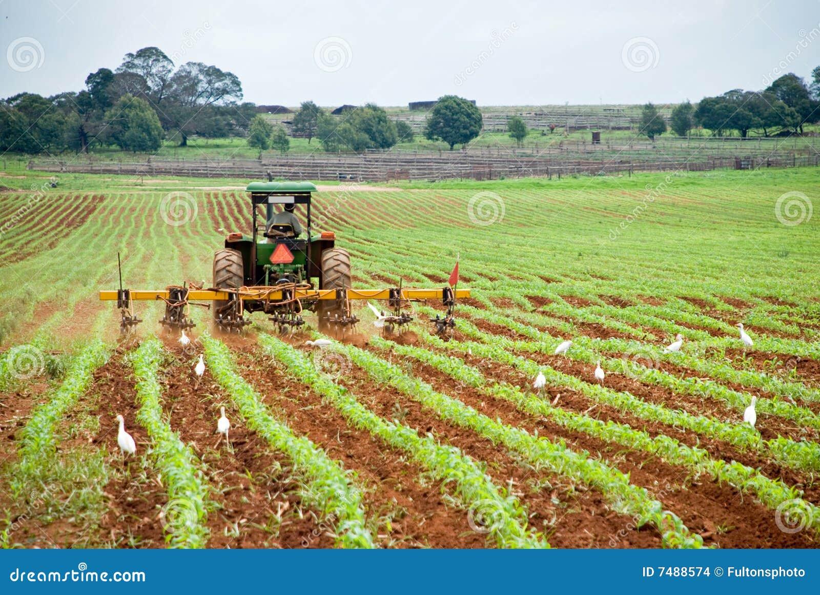Tractor en ploeg