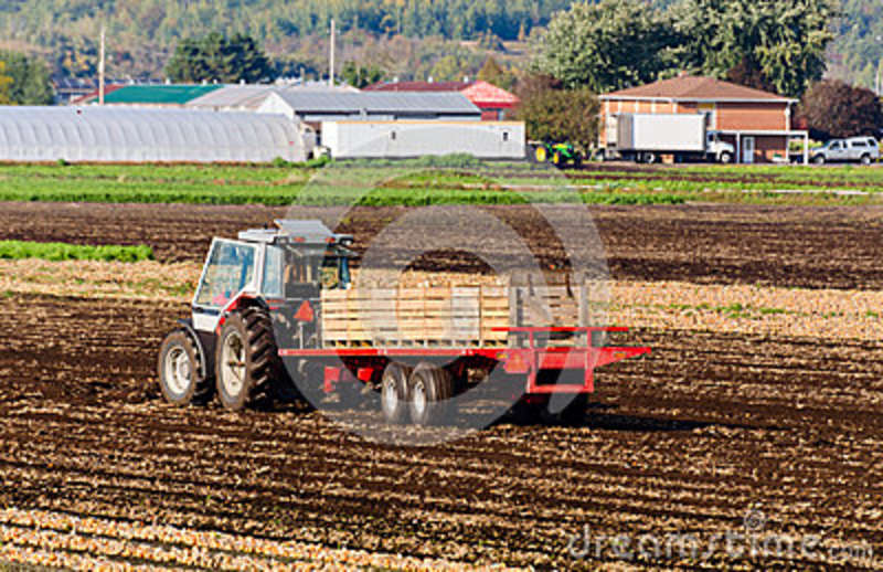 Tractor Pulled Wagon : Tractor on the field royalty free stock image