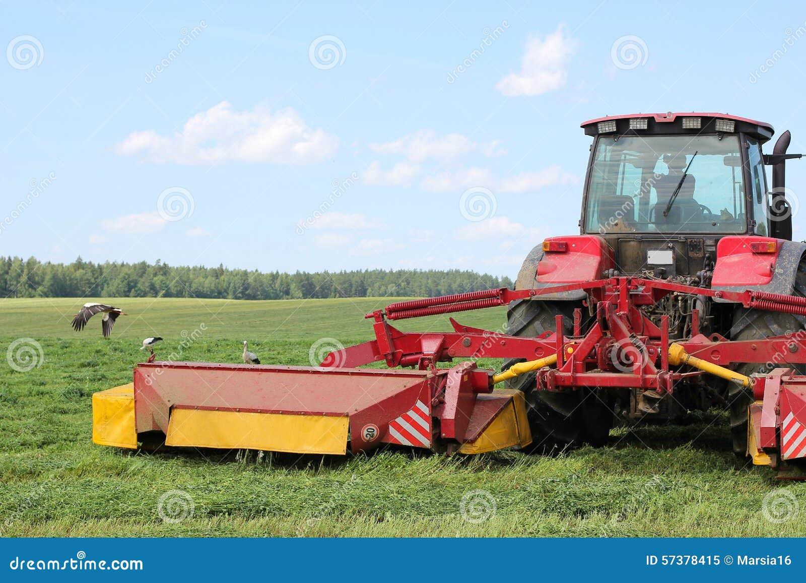 Tractor op het gebied, door ooievaars wordt omringd die