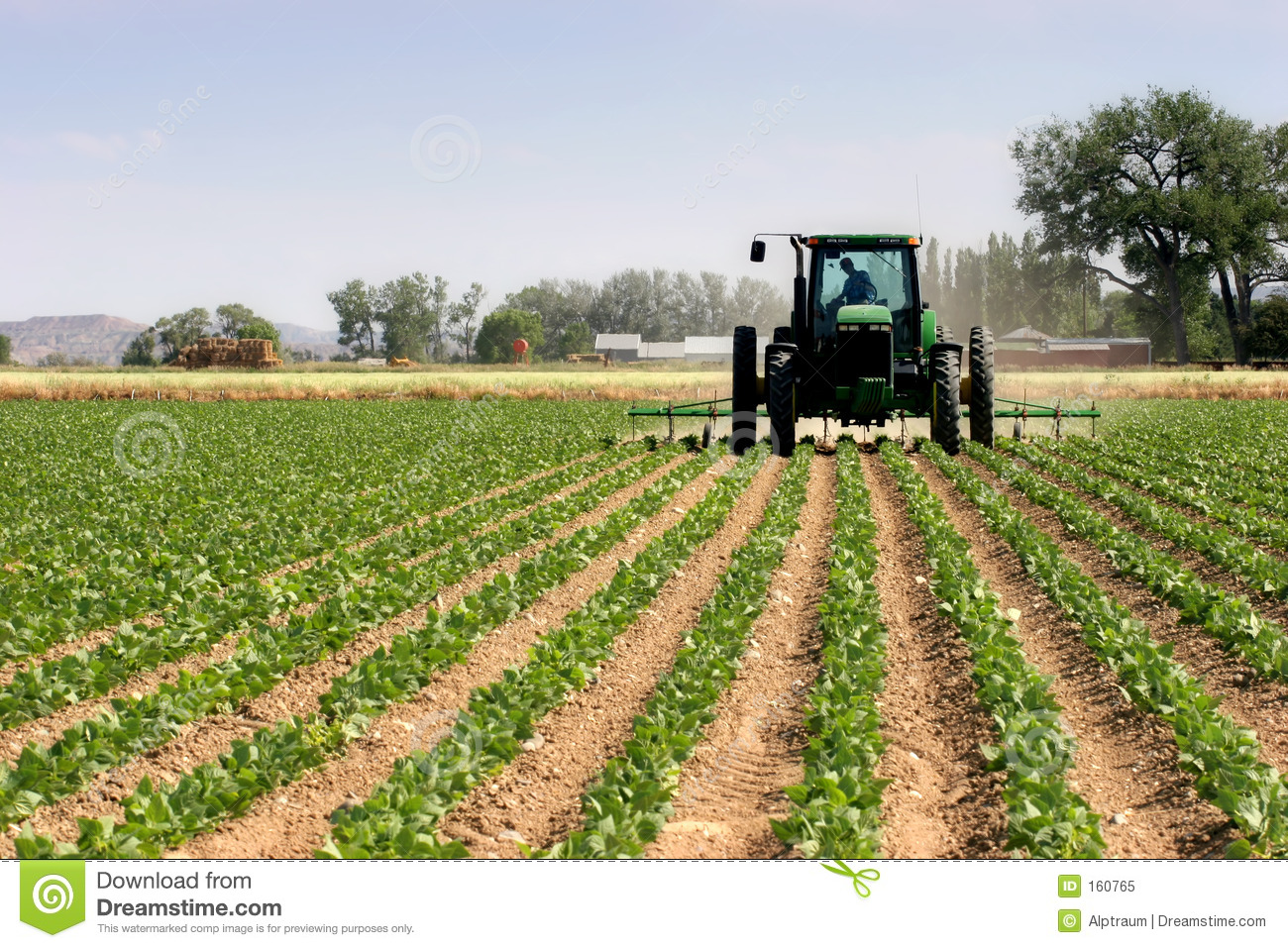 Tractor plowing the fields