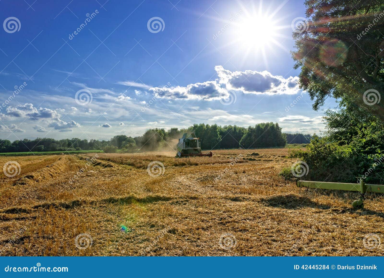 Tractores y cosecha - vintage