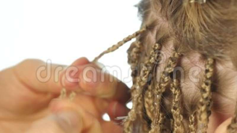 Traditional African Hairstyles On White Women Professional Hairdresser Weaves Plaits Head Fingers