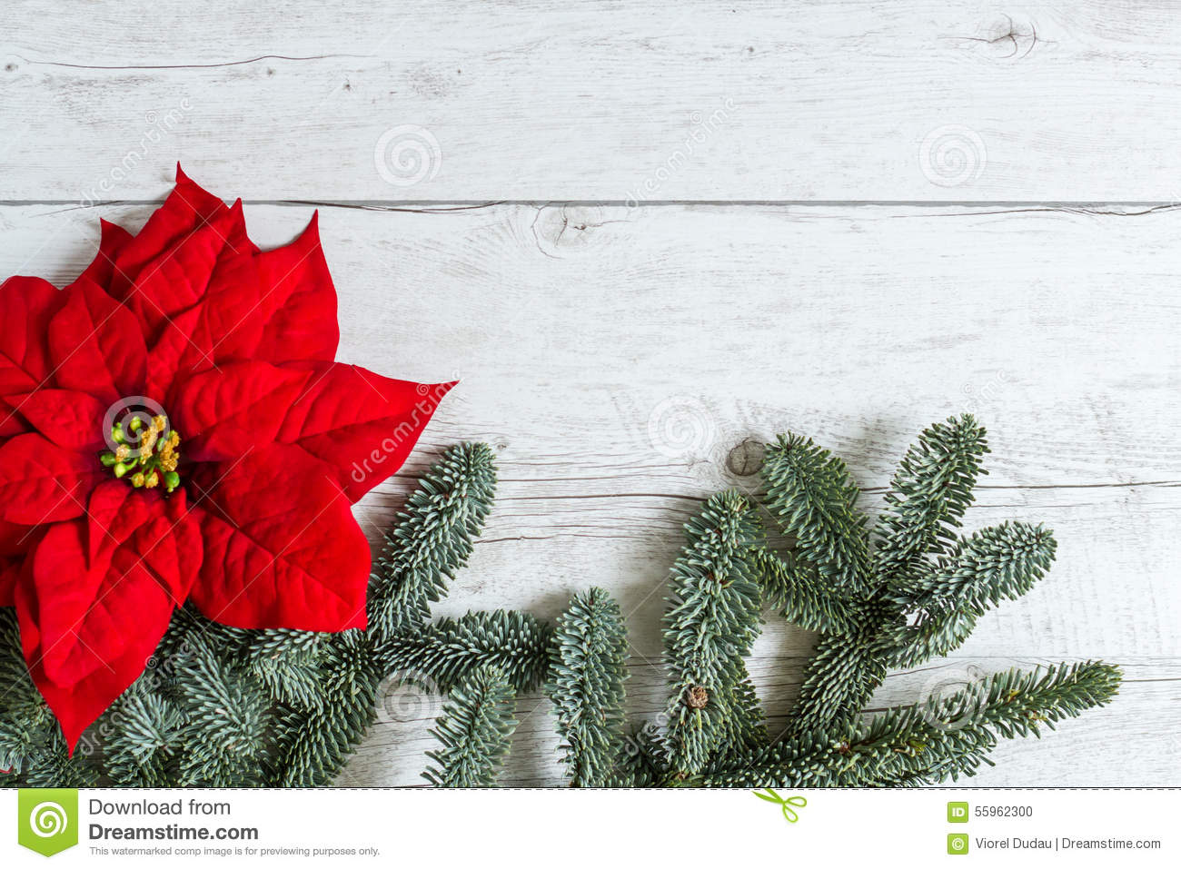 Traditional christmas background stock photo image of