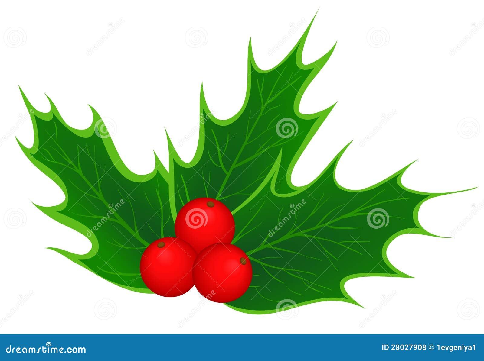 winter berries clip art