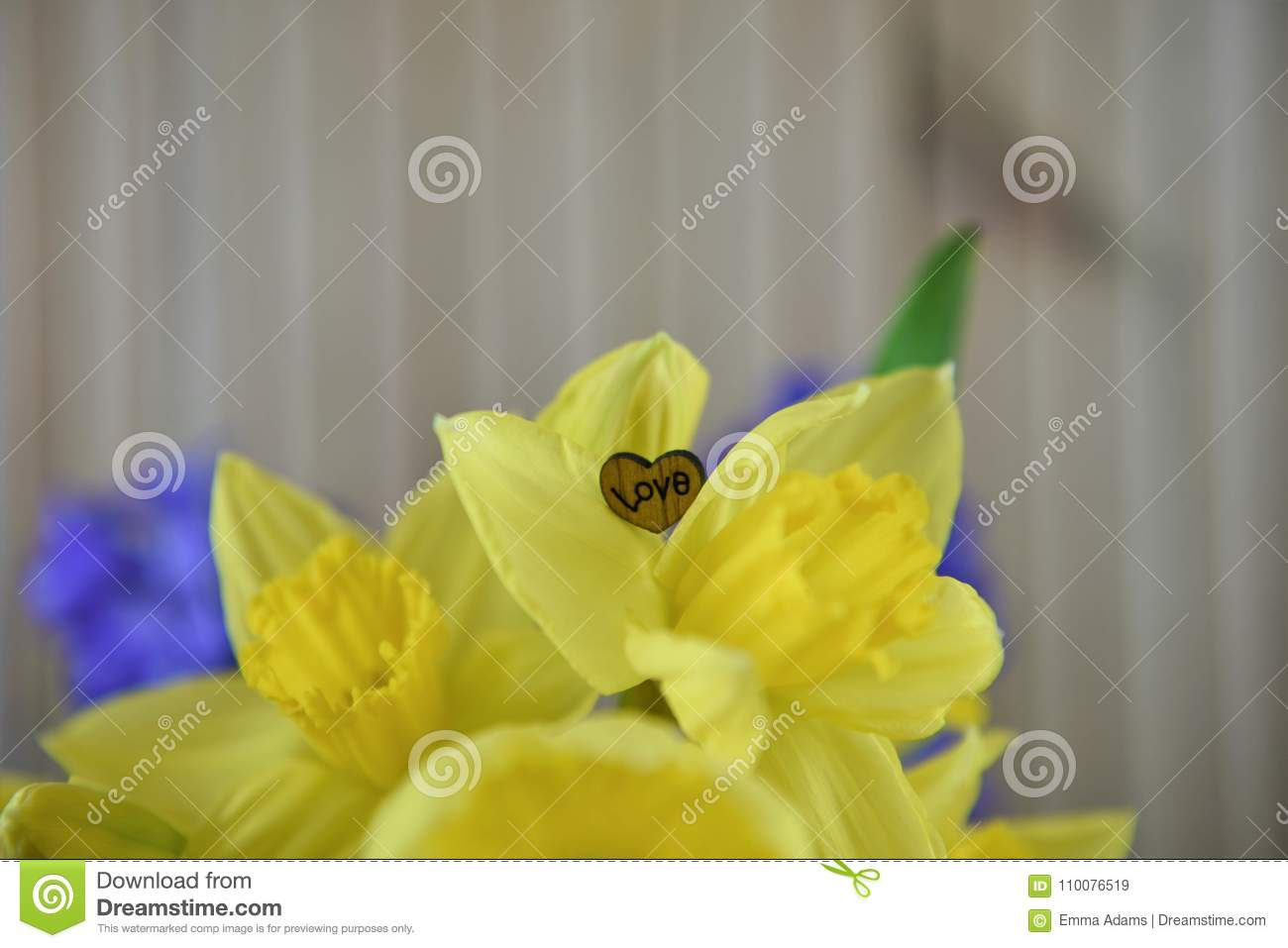 Springtime Flowers Of Daffodils With Wood Love Heart Decoration